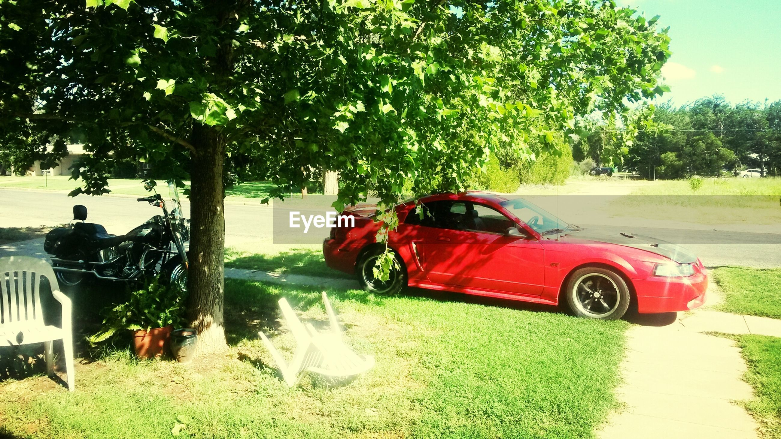 tree, land vehicle, car, transportation, grass, mode of transport, green color, field, growth, sky, day, road, outdoors, street, nature, travel, stationary, vehicle, sunlight, red