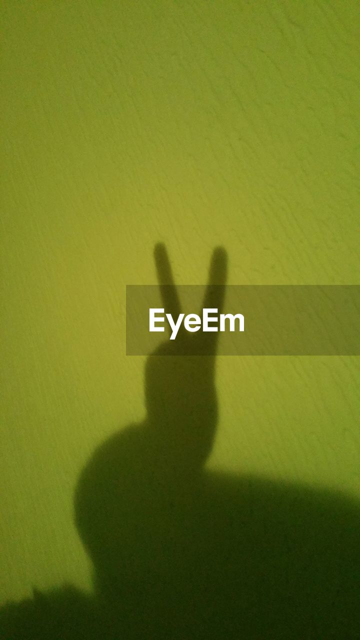 shadow, focus on shadow, silhouette, real people, indoors, one person, sunlight, human hand, men, day, people