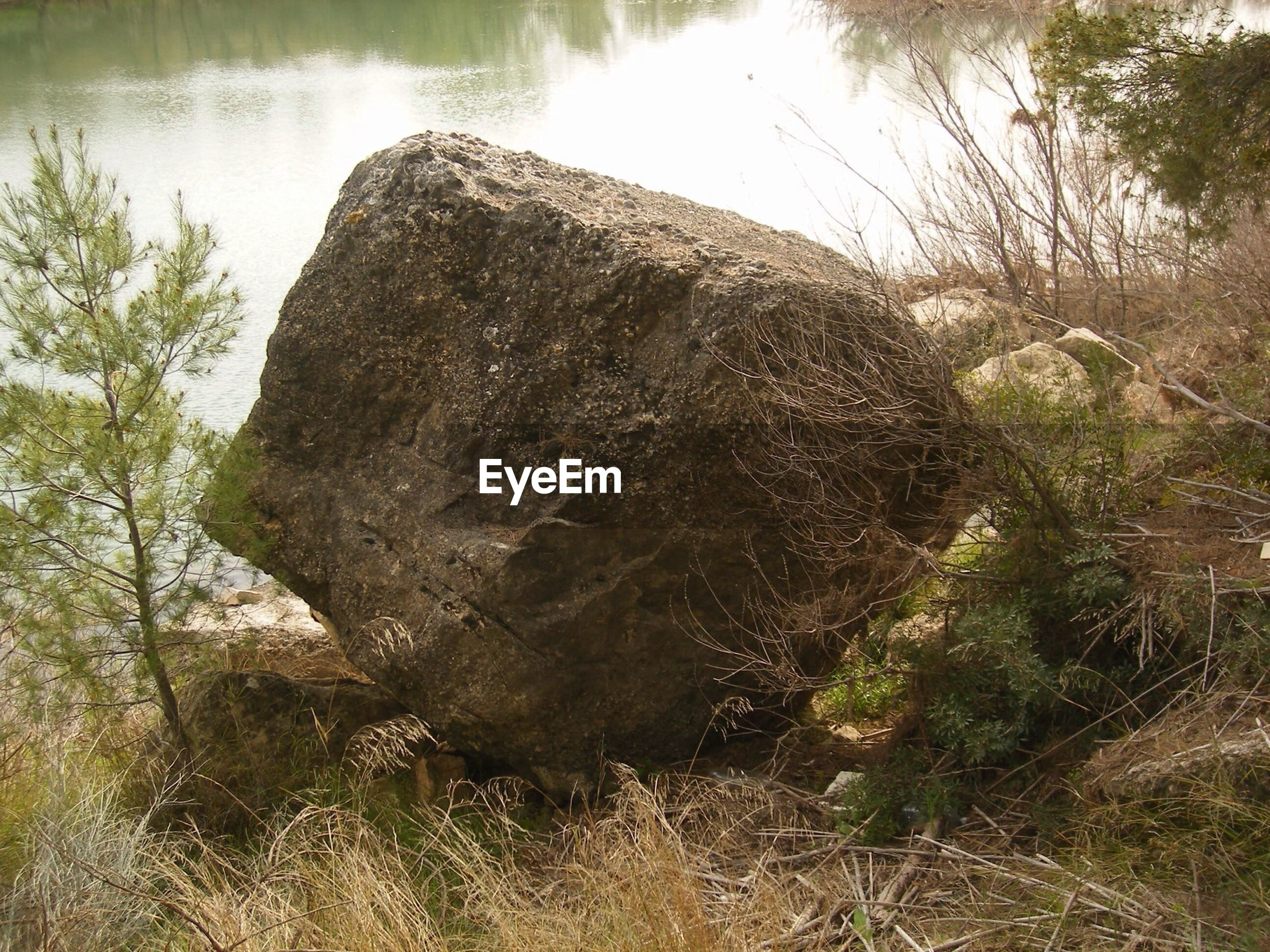 Close-up of rock at lakeshore