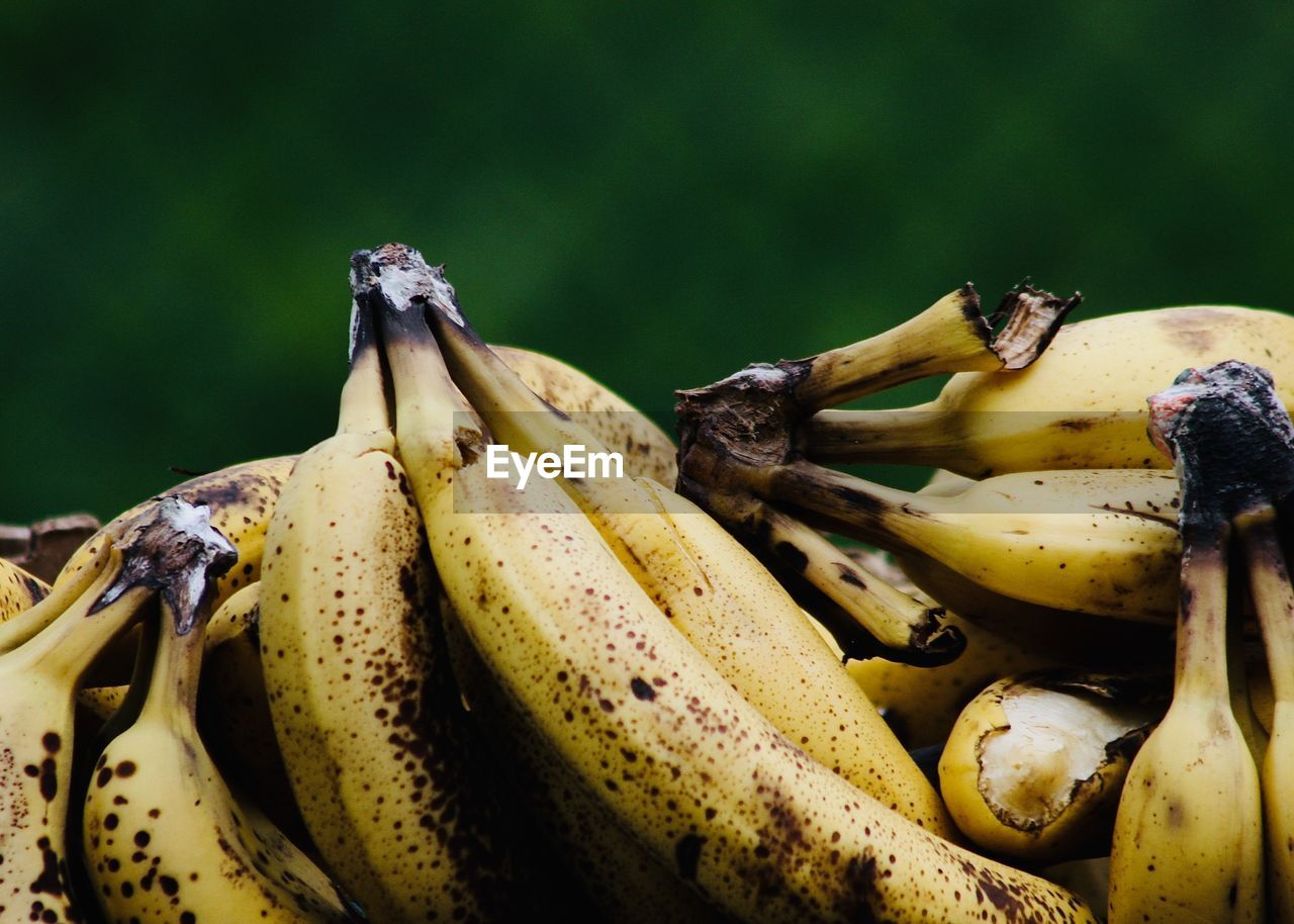 banana, healthy eating, food, food and drink, fruit, wellbeing, freshness, close-up, yellow, no people, day, still life, ripe, nature, selective focus, focus on foreground, plant, organic, outdoors, raw food