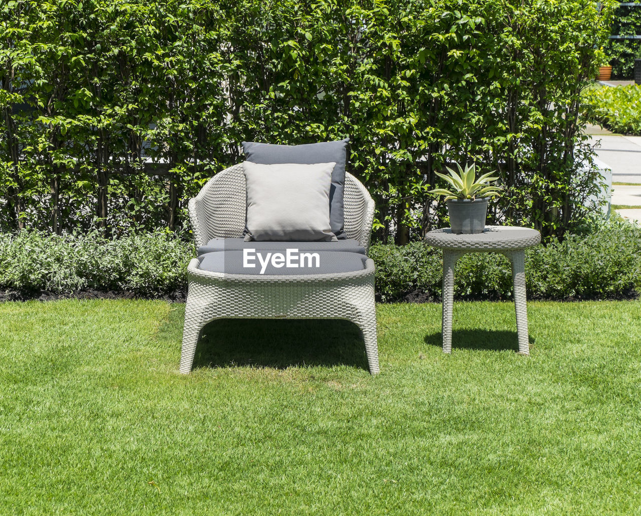 Empty Chair In Garden