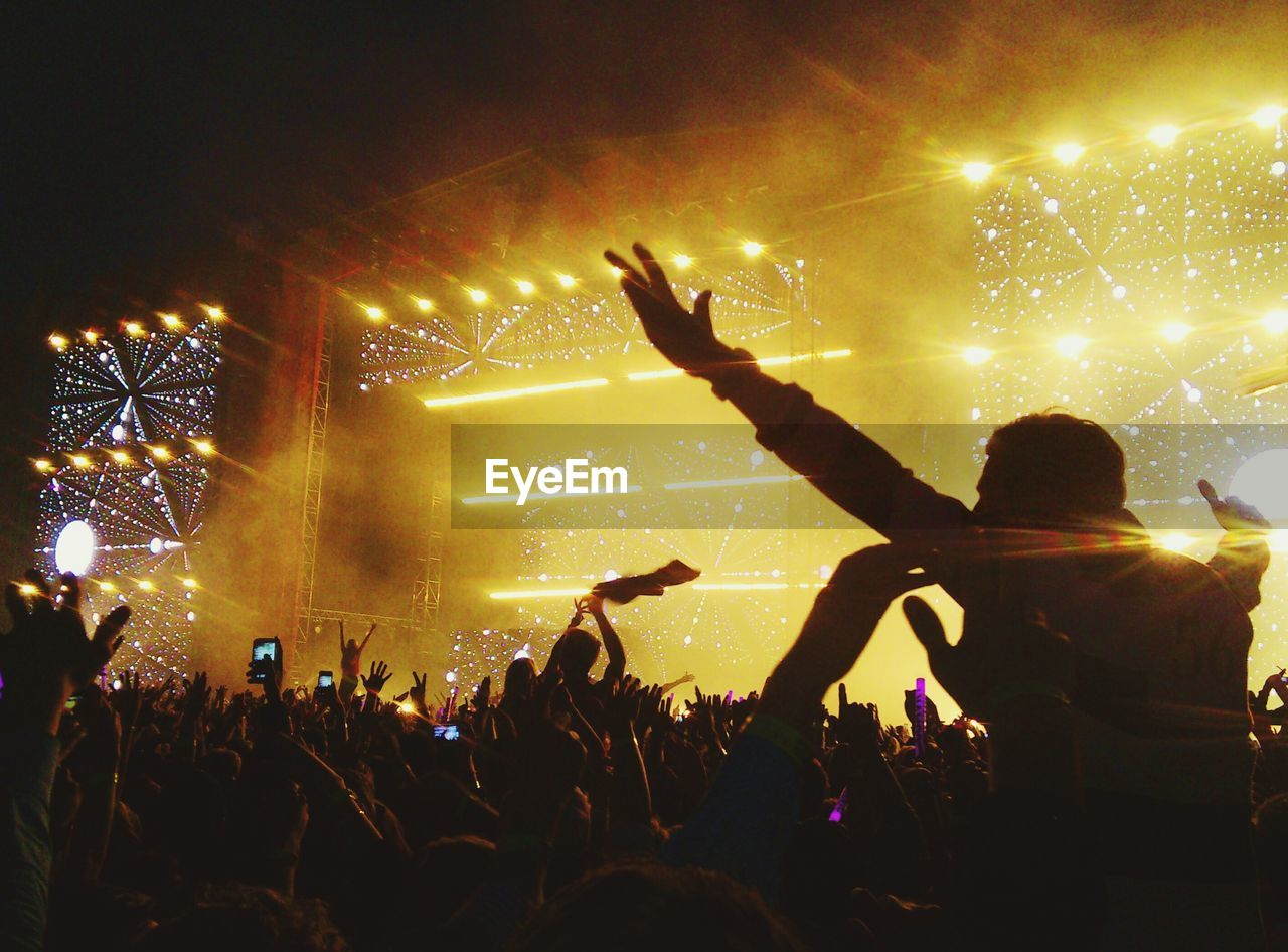 Fans At Music Concert