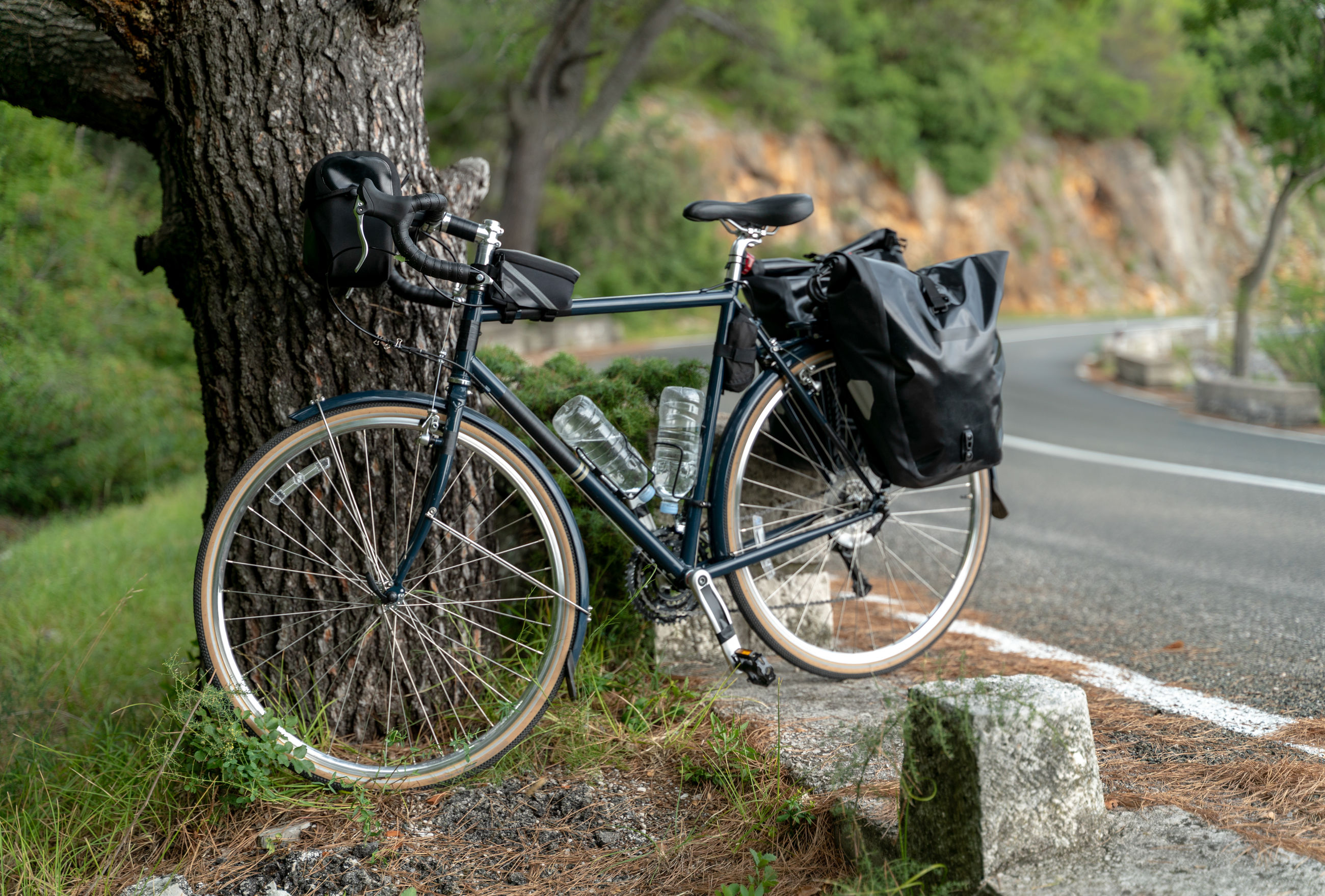 BICYCLES PARKED ON TREE TRUNK