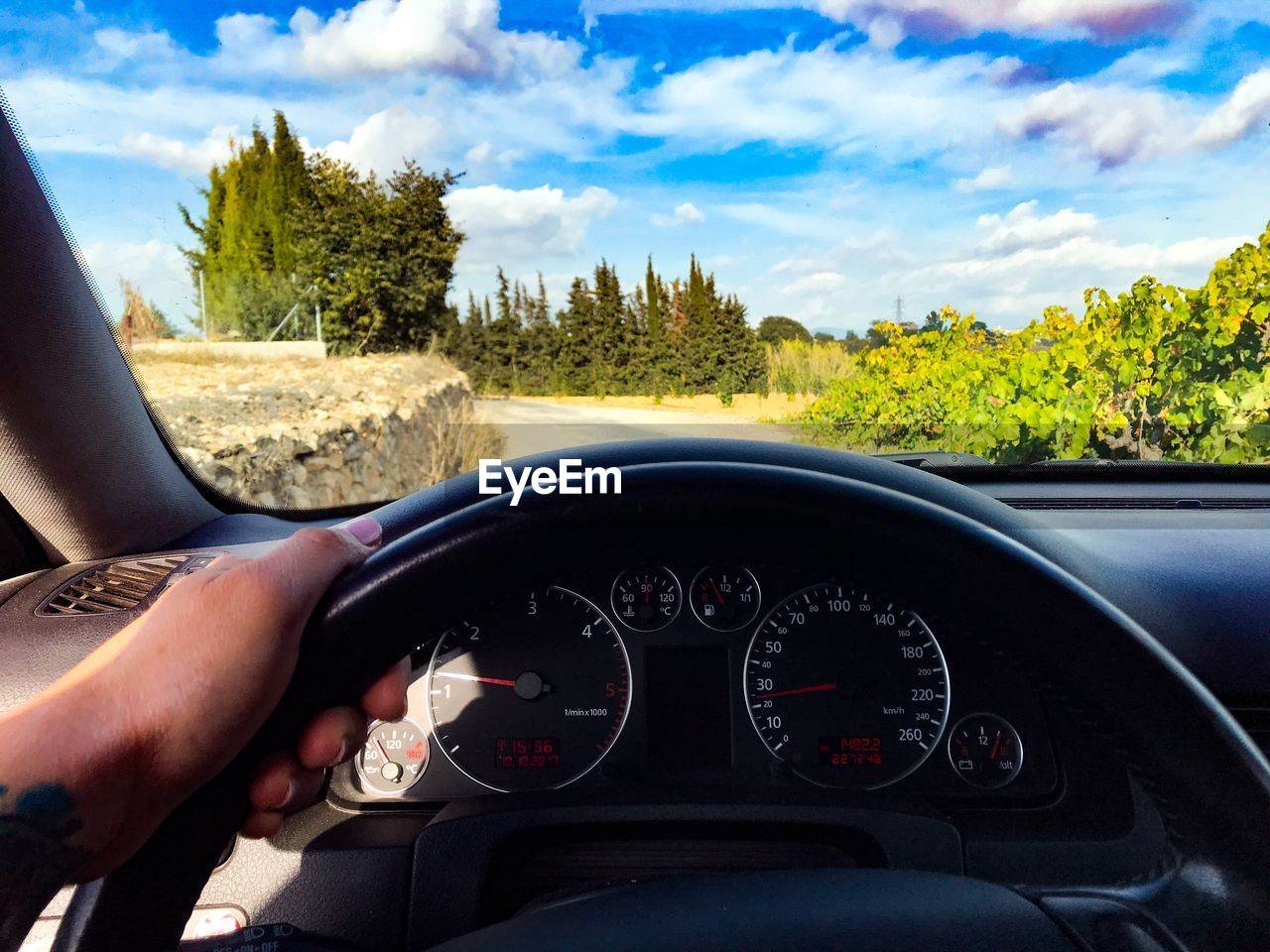 mode of transportation, car, transportation, tree, control panel, vehicle interior, dashboard, cloud - sky, motor vehicle, land vehicle, sky, glass - material, plant, steering wheel, car interior, transparent, nature, real people, day, windshield, speedometer, hand, outdoors, finger