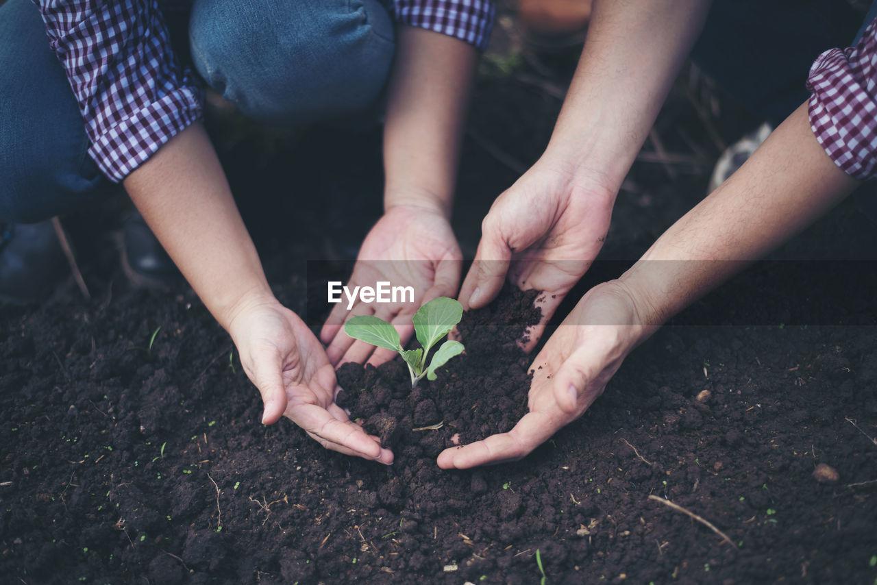 People Gardening On Field