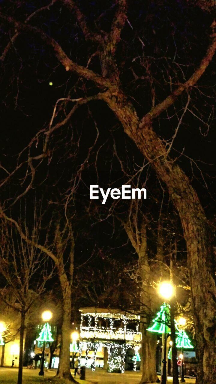 night, illuminated, bare tree, lighting equipment, tree, low angle view, street light, branch, outdoors, christmas lights, celebration, no people, nightlife, christmas decoration, sky