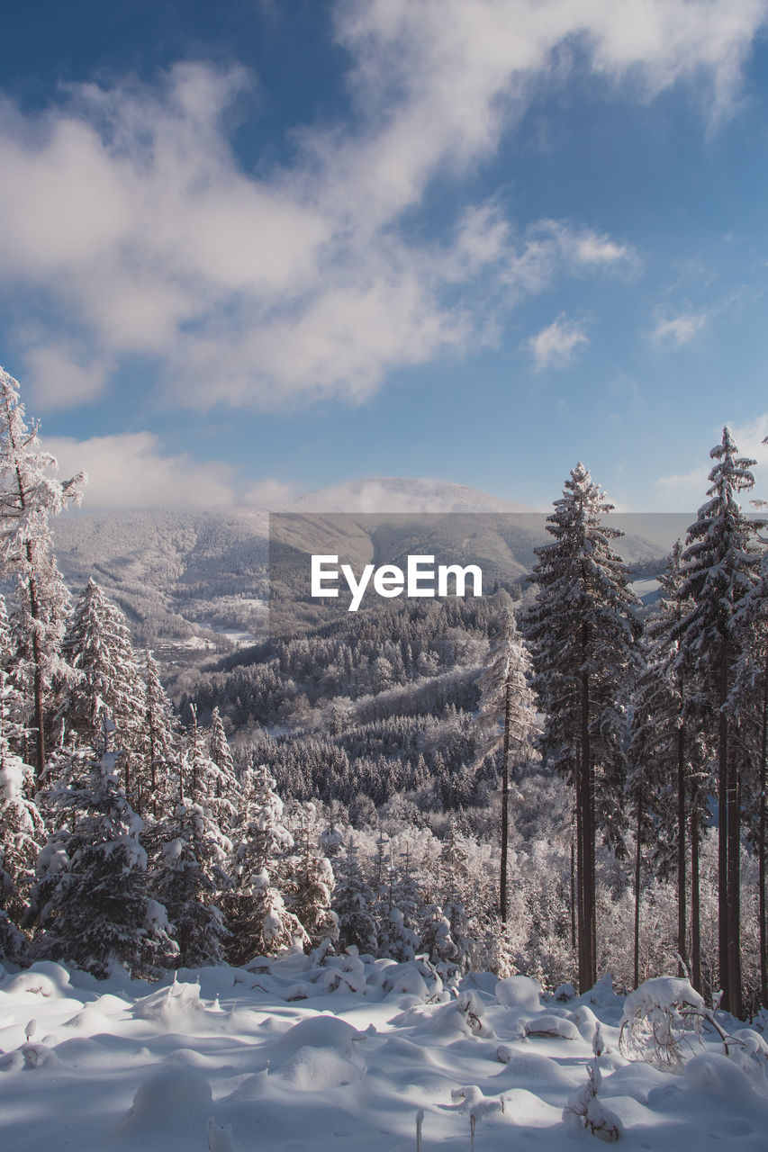 View of the snowy wild landscape located in europe in the czech lands.