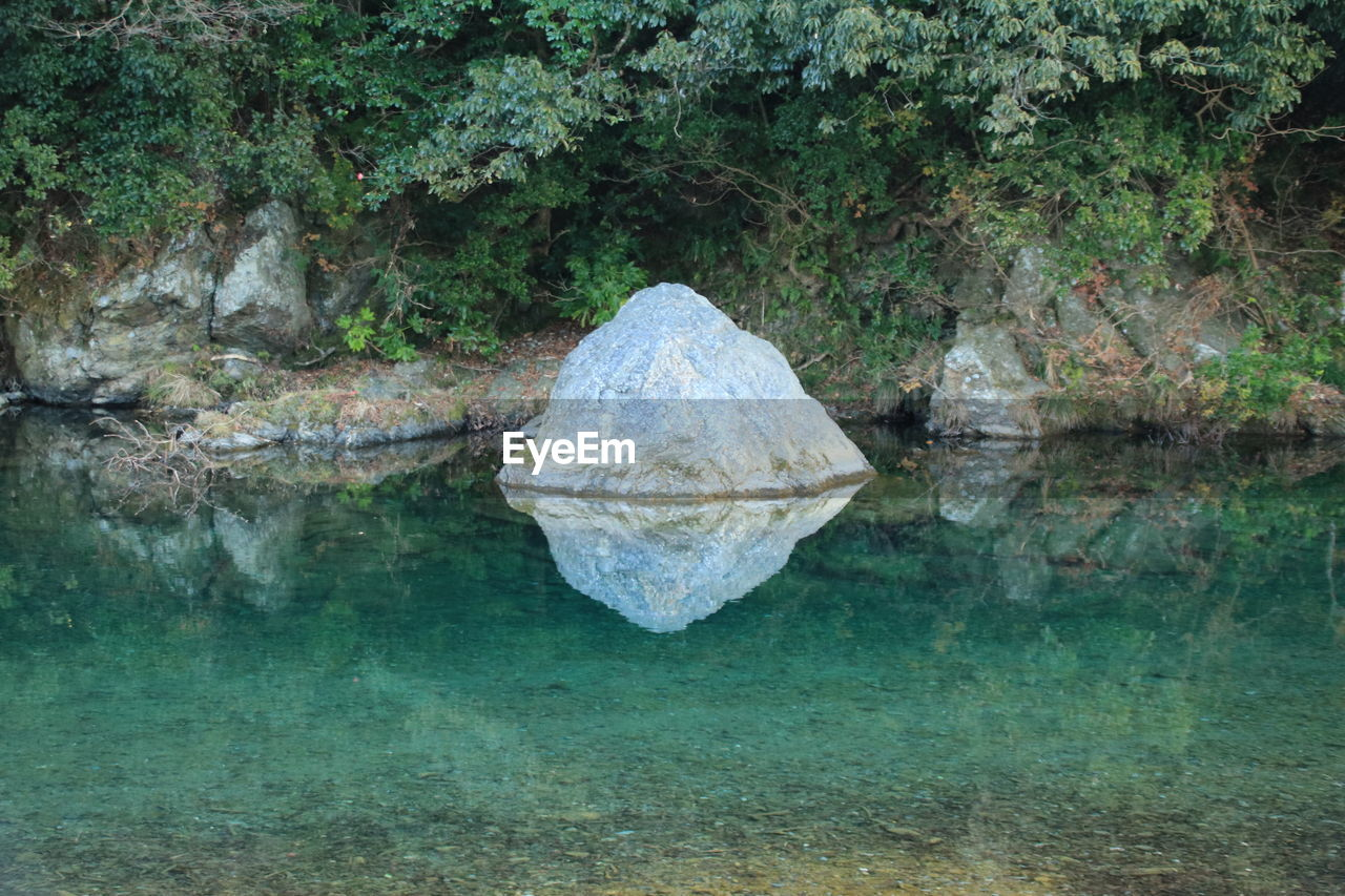 water, nature, rock, rock - object, solid, day, tranquility, no people, reflection, beauty in nature, lake, tranquil scene, plant, waterfront, outdoors, transparent, environment, geology, purity