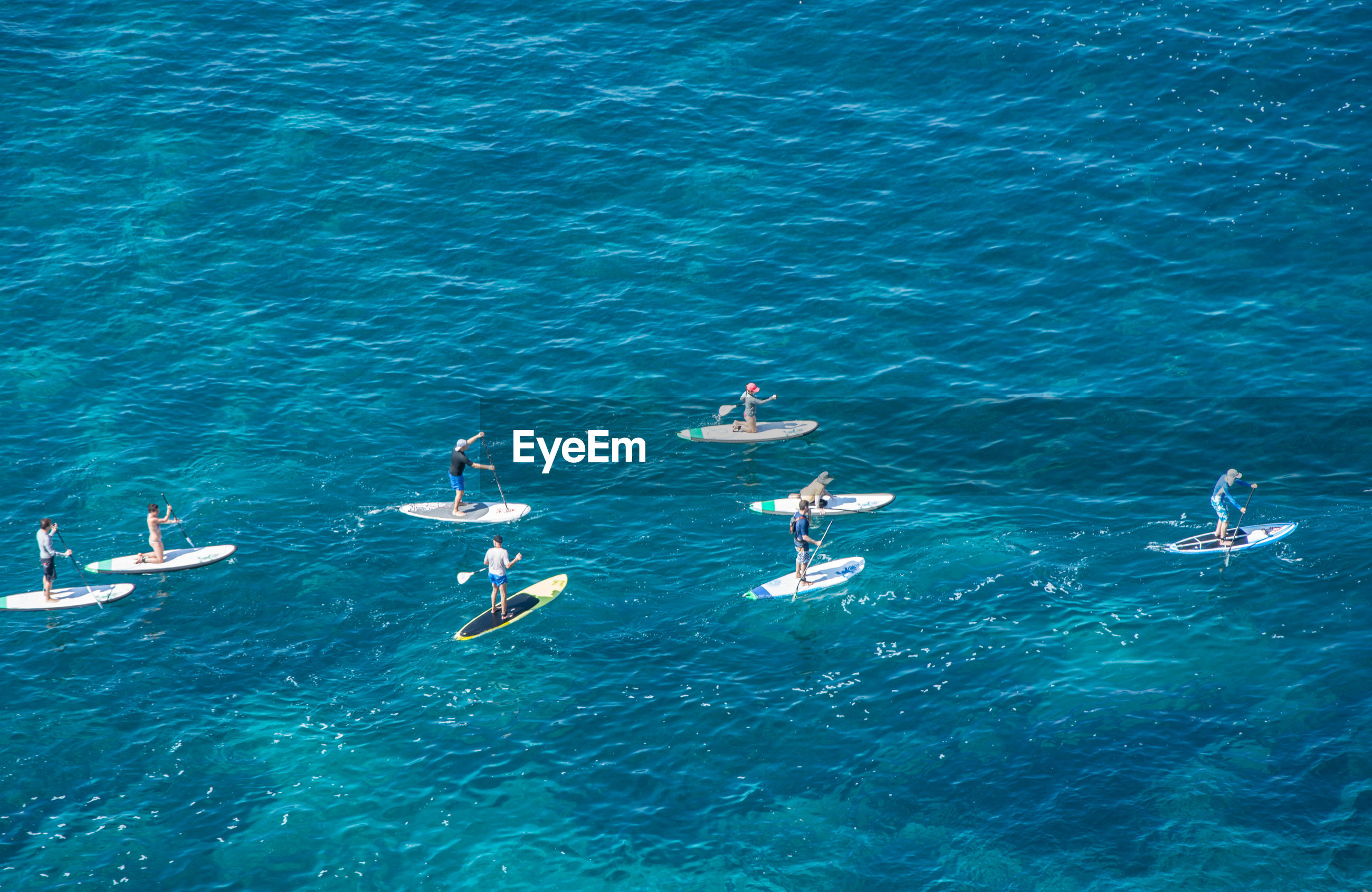High angle view of people enjoying paddleboarding in sea on sunny day