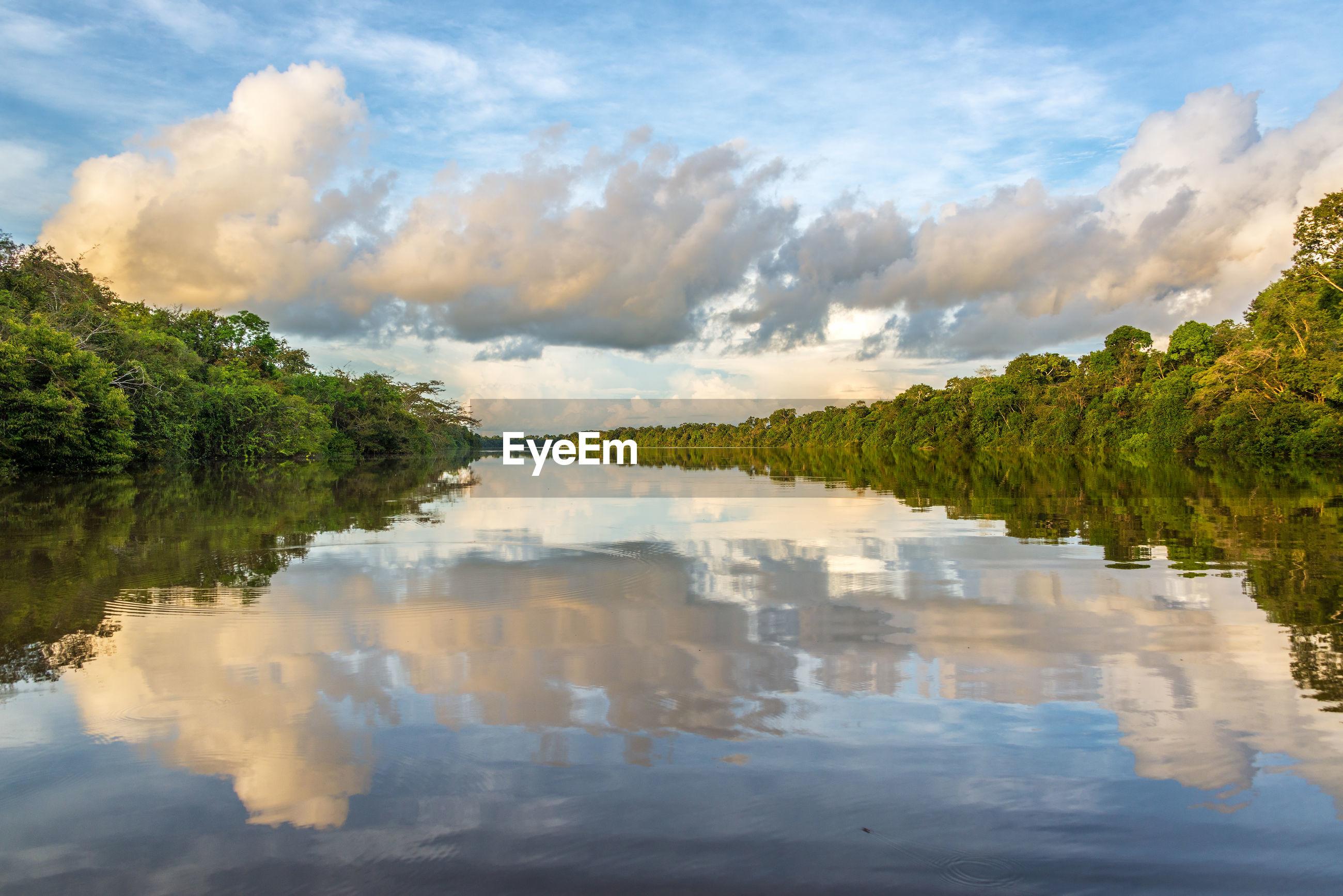 Javary river amidst amazon rainforest against cloudy sky