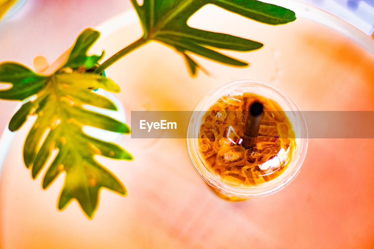 table, food, food and drink, indoors, freshness, leaf, plant part, no people, high angle view, close-up, drink, still life, refreshment, nature, directly above, plant, wellbeing, healthy eating, focus on foreground, ready-to-eat, herb, breakfast