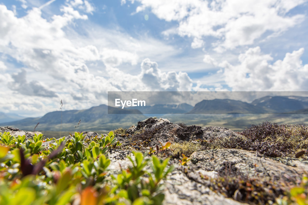 mountain, beauty in nature, selective focus, nature, tranquility, sky, day, cloud - sky, no people, scenics - nature, plant, landscape, growth, tranquil scene, rock, environment, solid, non-urban scene, outdoors, mountain range, surface level