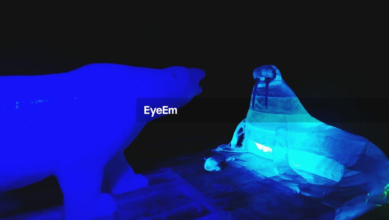blue, illuminated, studio shot, electricity, indoors, night, no people, close-up