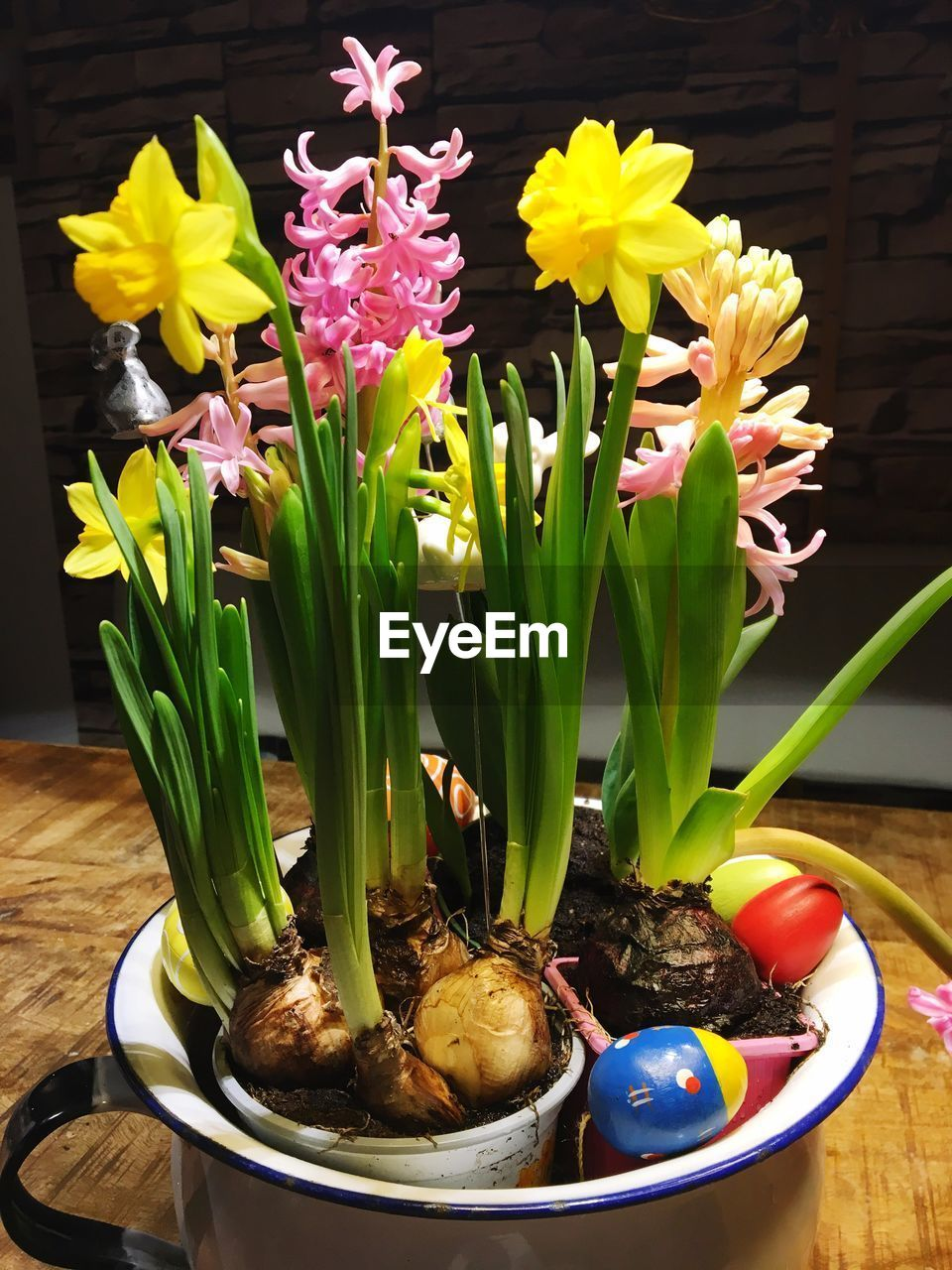 flower, freshness, no people, fragility, table, indoors, food, close-up, nature, beauty in nature, day, ready-to-eat, flower head