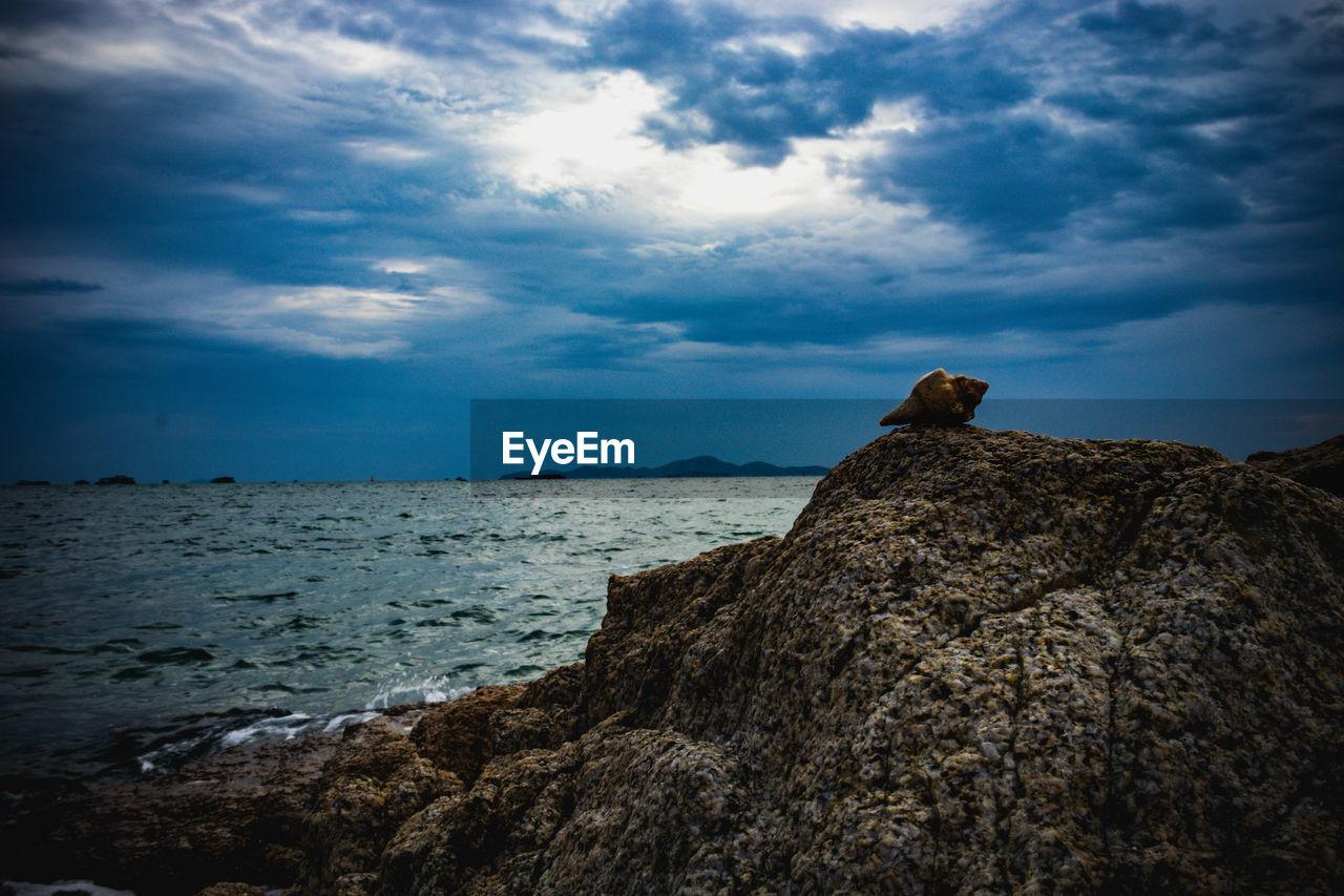 SCENIC VIEW OF ROCK ON SEA SHORE