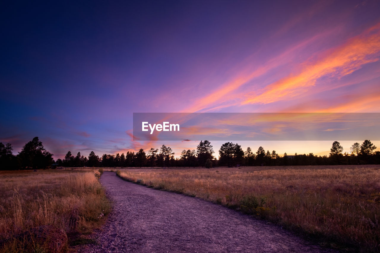 DIRT ROAD AMIDST TREES ON FIELD AGAINST ROMANTIC SKY