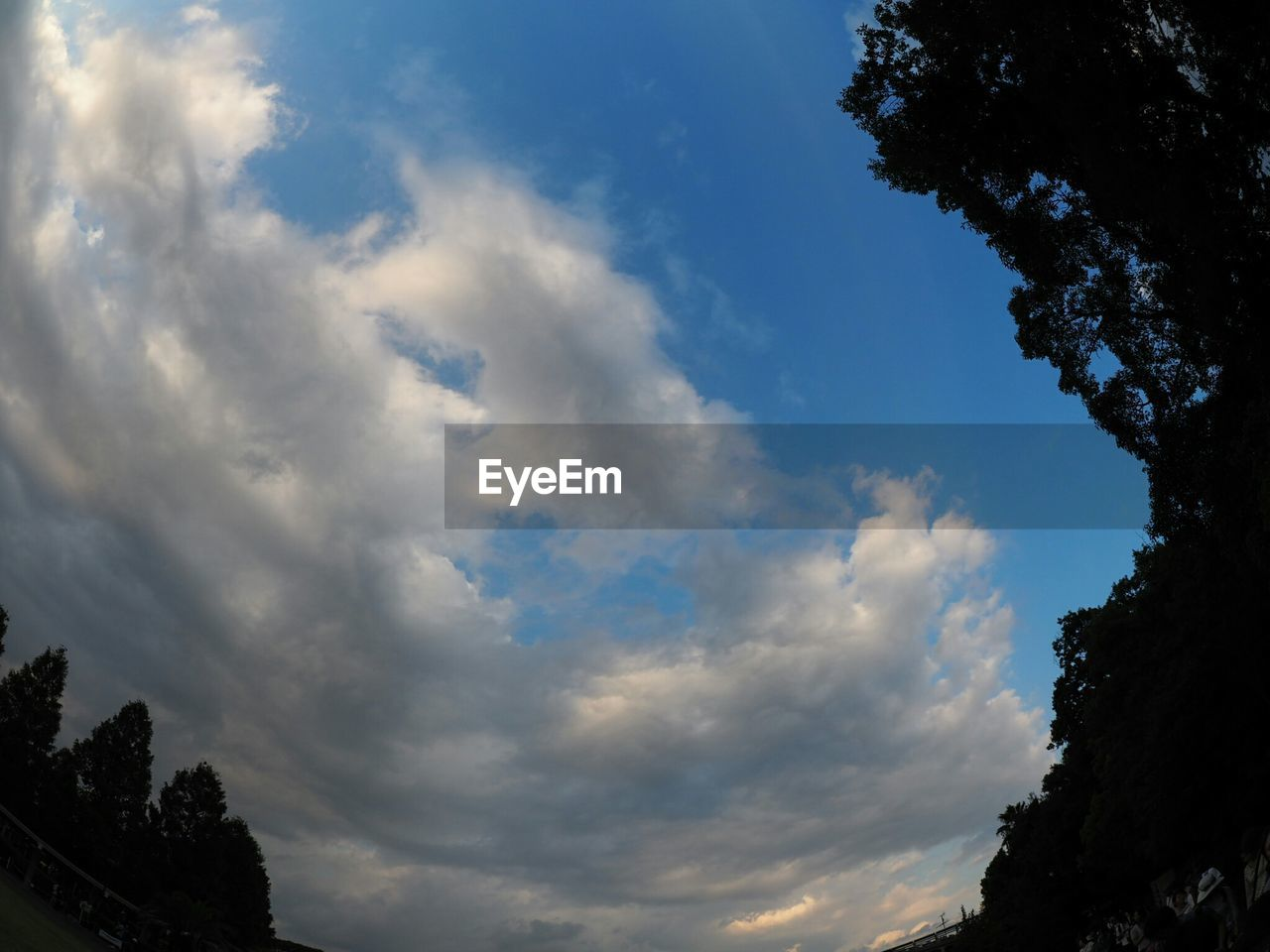 sky, cloud - sky, low angle view, beauty in nature, nature, outdoors, tree, day, scenics, no people, tranquil scene, tranquility