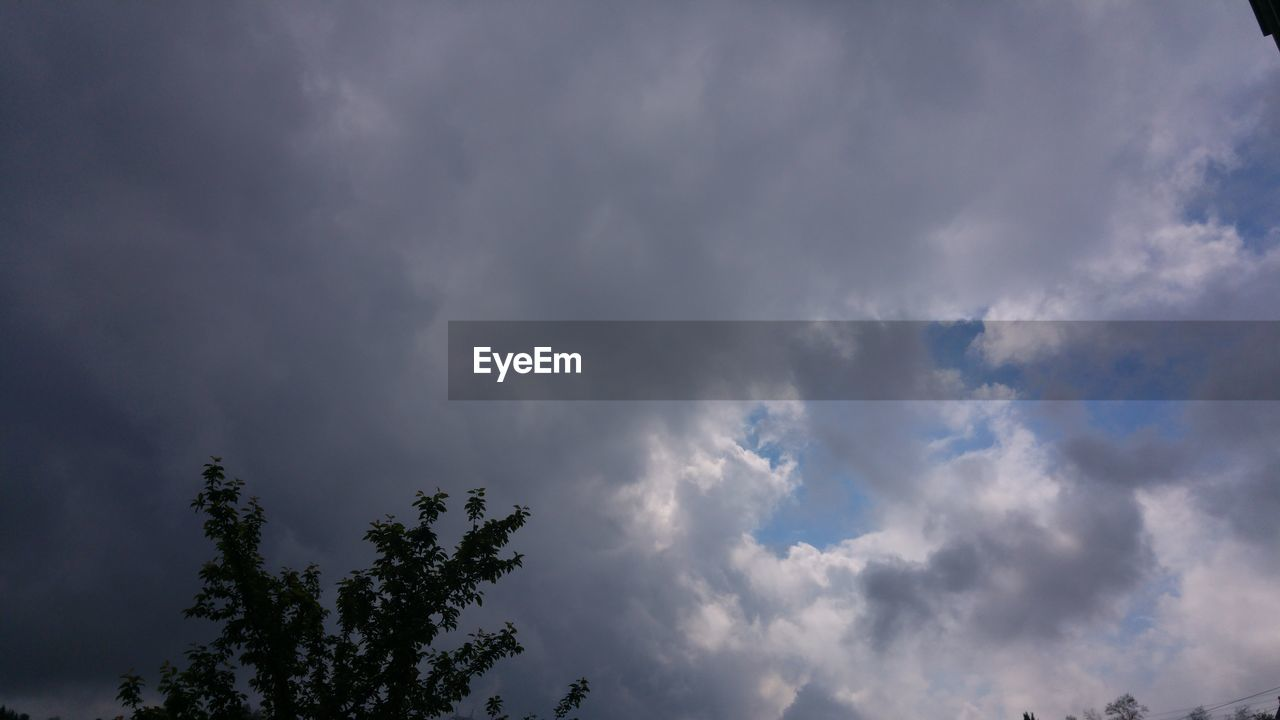 sky, cloud - sky, low angle view, tree, nature, beauty in nature, weather, day, no people, outdoors, scenics, tranquility