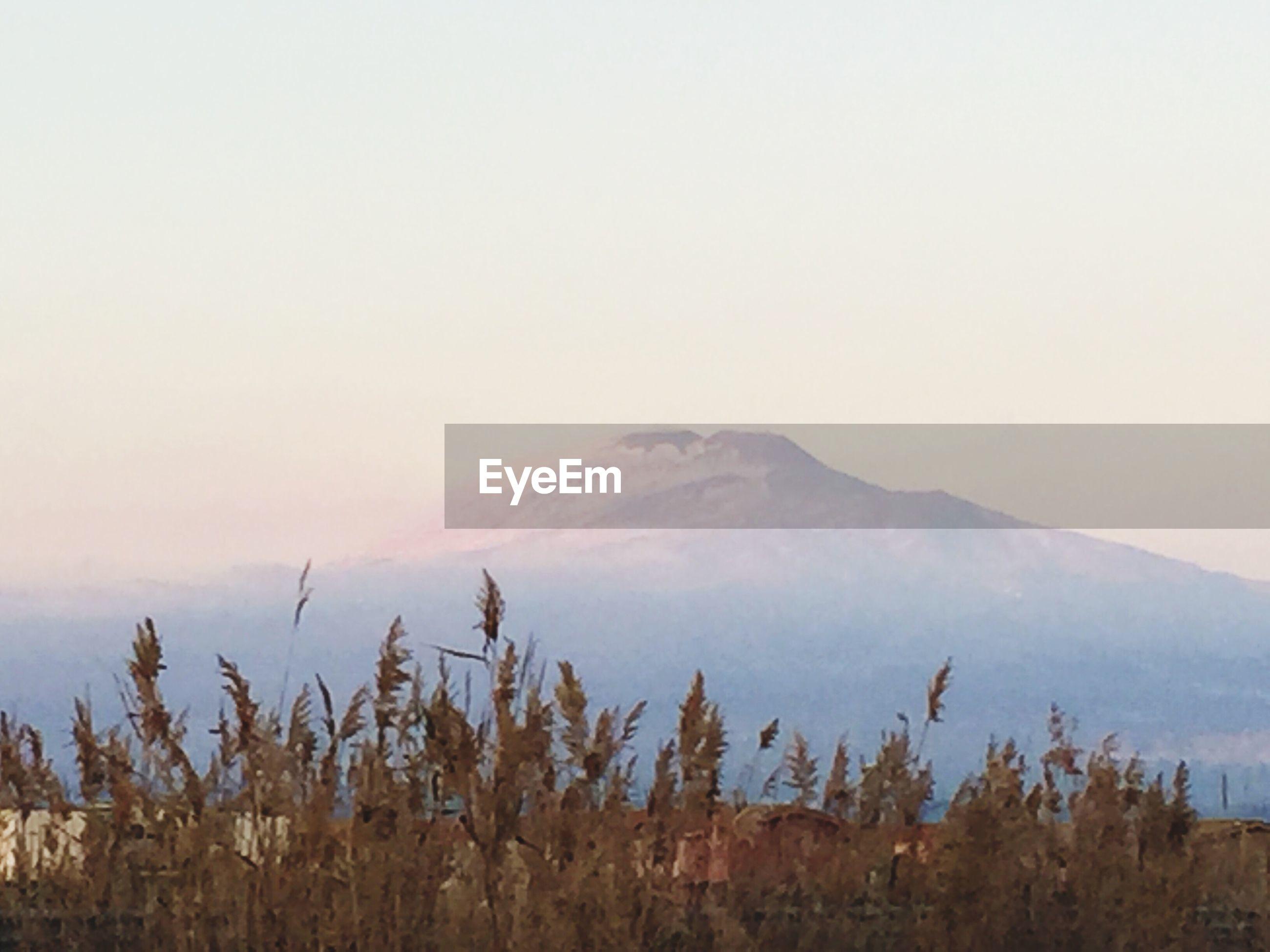 mountain, tranquil scene, tranquility, scenics, beauty in nature, mountain range, landscape, nature, winter, weather, cold temperature, copy space, snow, fog, non-urban scene, sky, idyllic, plant, remote