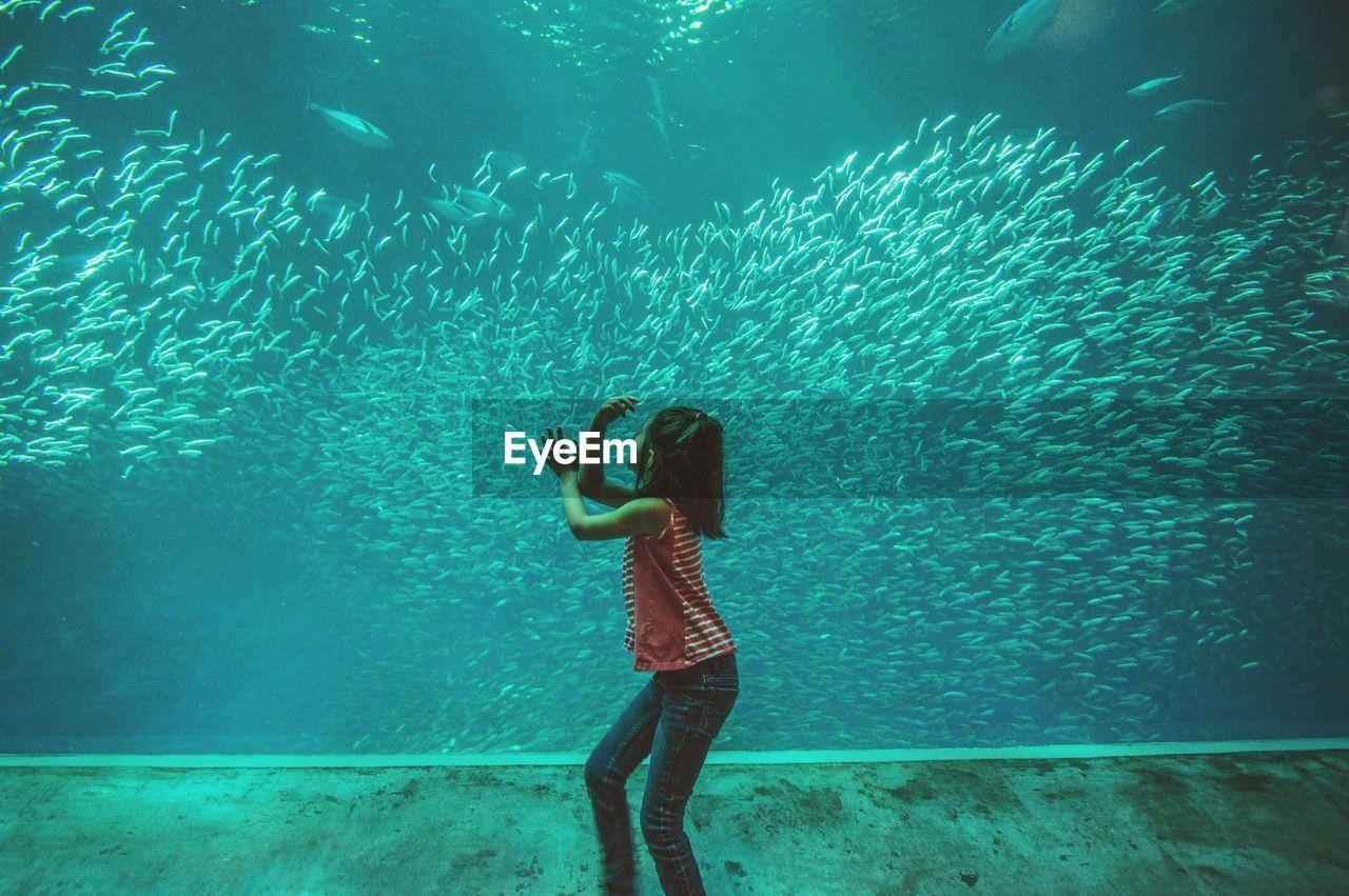 Girl looking at fishes in aquarium