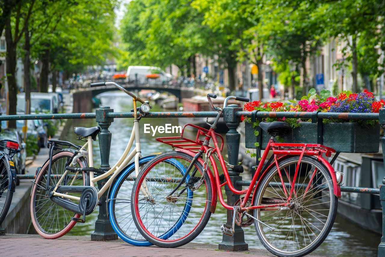 bicycle, transportation, land vehicle, mode of transportation, architecture, city, stationary, plant, focus on foreground, day, tree, no people, nature, flower, red, railing, outdoors, flowering plant, building exterior, built structure, wheel, canal