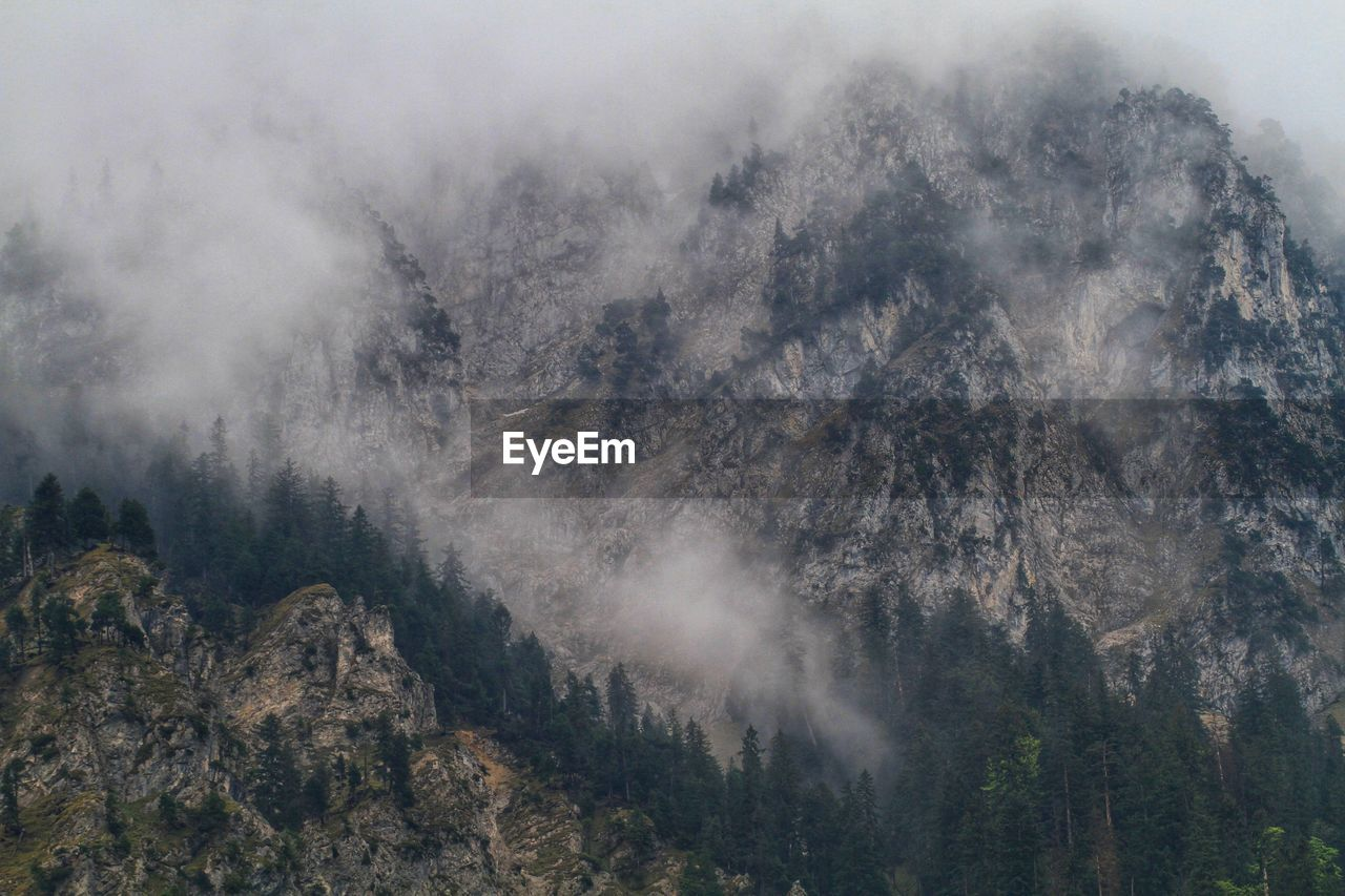 mountain, beauty in nature, tree, scenics - nature, plant, no people, nature, non-urban scene, fog, tranquil scene, environment, tranquility, land, sky, day, cloud - sky, forest, geology, mountain range, outdoors, mountain peak, formation, power in nature