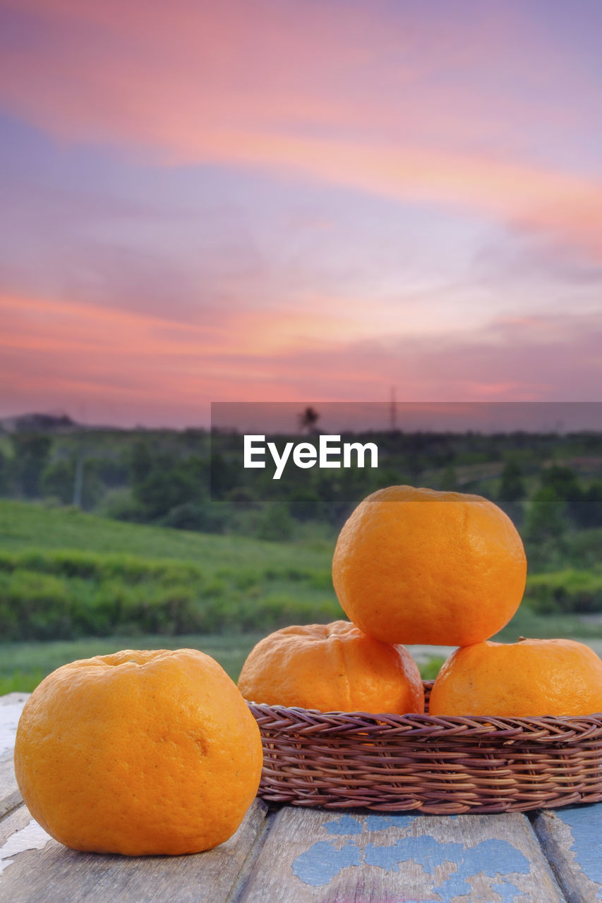 orange color, food and drink, food, healthy eating, fruit, wellbeing, freshness, sunset, focus on foreground, no people, sky, close-up, cloud - sky, citrus fruit, vegetable, pumpkin, nature, agriculture, still life, orange, outdoors