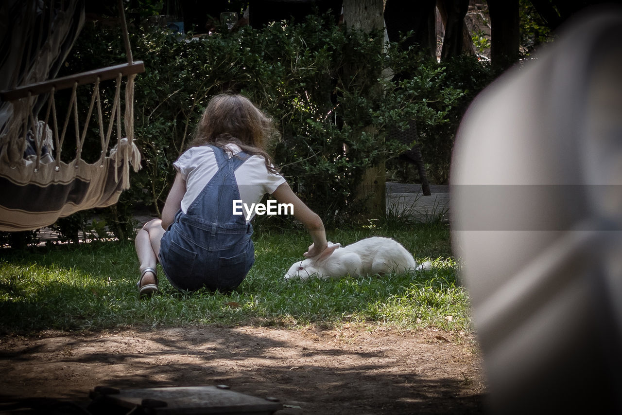 Rear View Of Girl Stroking Rabbit In Yard