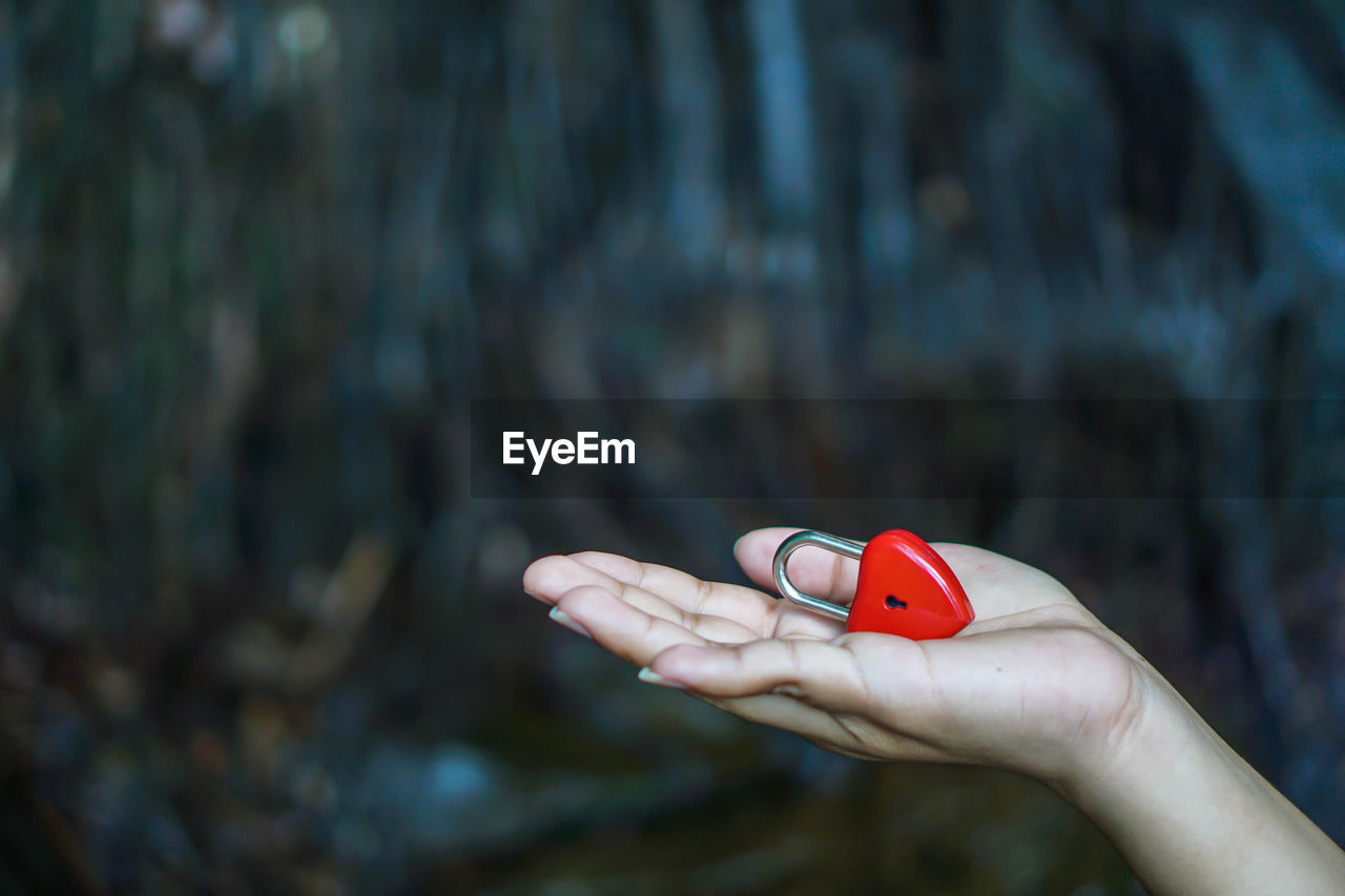 human hand, hand, human body part, holding, focus on foreground, one person, day, real people, body part, close-up, red, finger, lifestyles, leisure activity, human finger, nature, nail polish, unrecognizable person, outdoors, nail, human limb