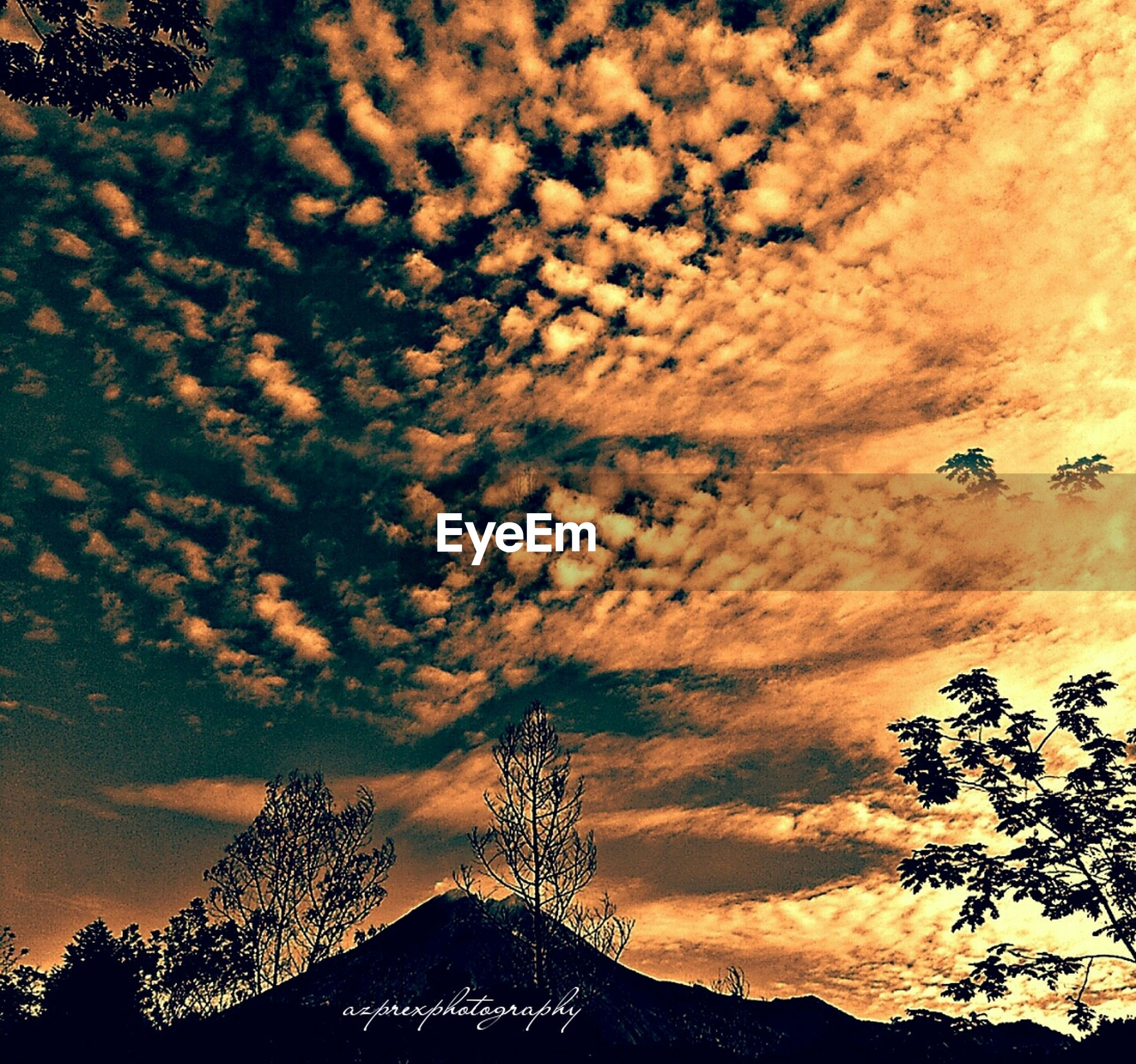 sky, low angle view, sunset, cloud - sky, tree, silhouette, beauty in nature, nature, scenics, tranquility, cloudy, orange color, dramatic sky, tranquil scene, growth, idyllic, cloud, high section, outdoors, no people