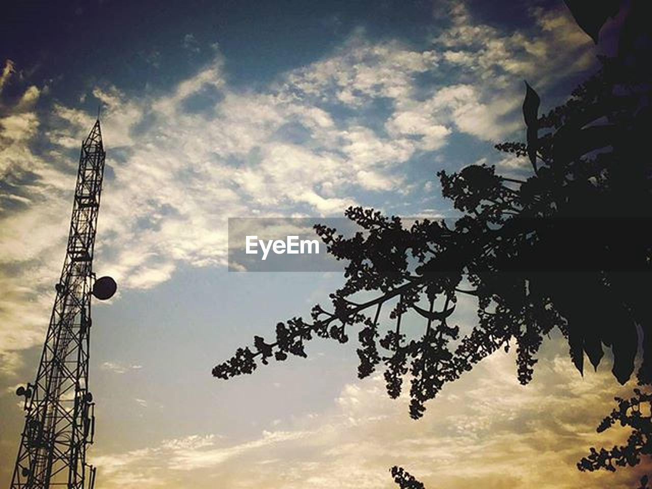 cloud - sky, sky, tree, low angle view, no people, communication, day, outdoors, nature, beauty in nature