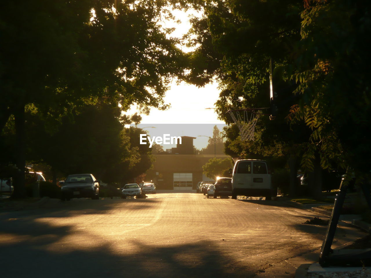 car, tree, street, transportation, road, land vehicle, sunlight, outdoors, no people, sky, city, day, nature
