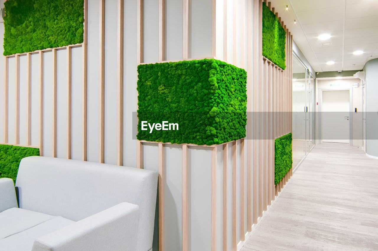 green color, no people, architecture, plant, built structure, nature, day, indoors, modern, growth, white color, building, grass, tree, empty, wall - building feature, decoration, hedge, potted plant