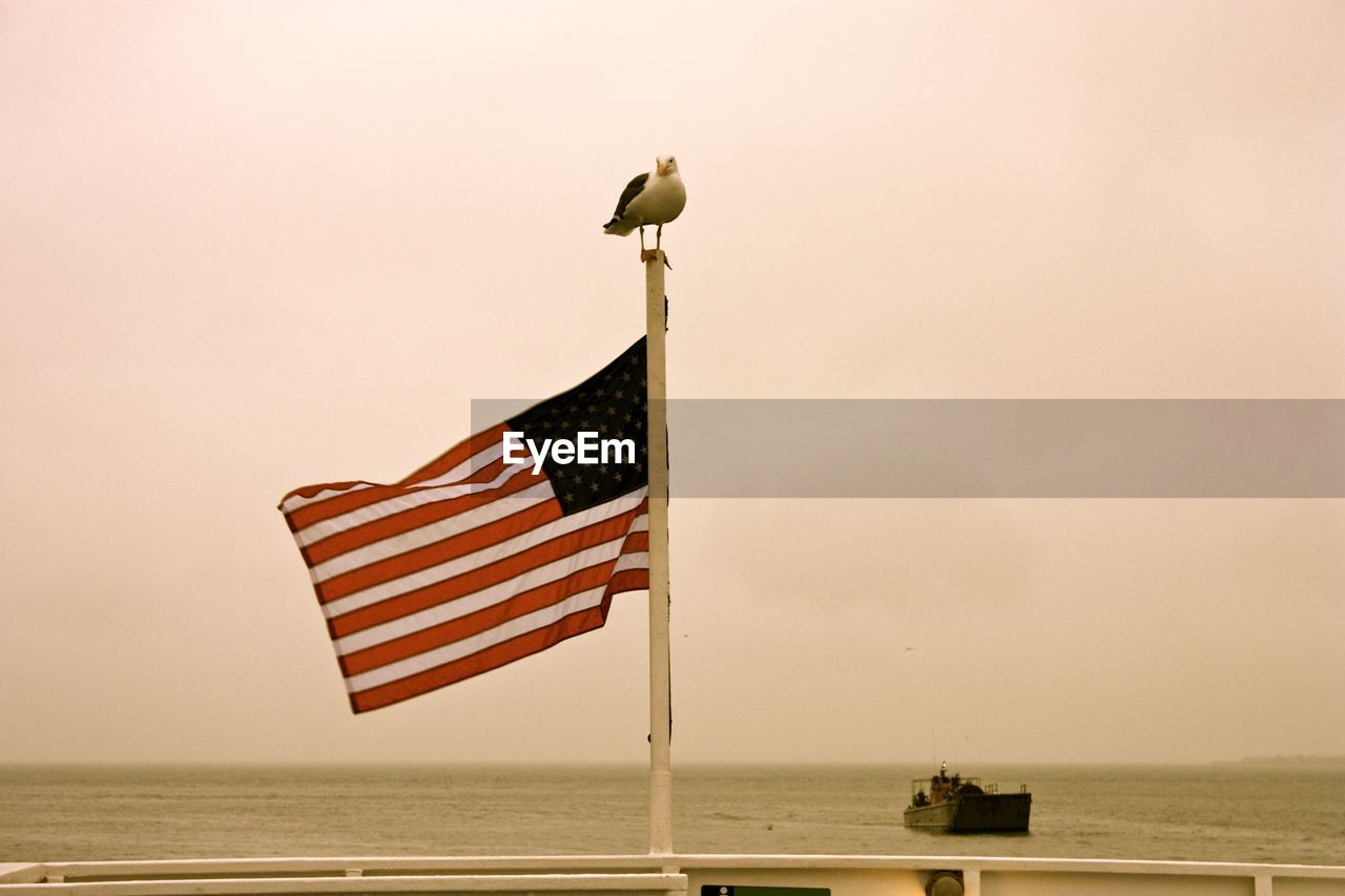 Low Angle View Of Seagull Perching On American Flag Against Sea