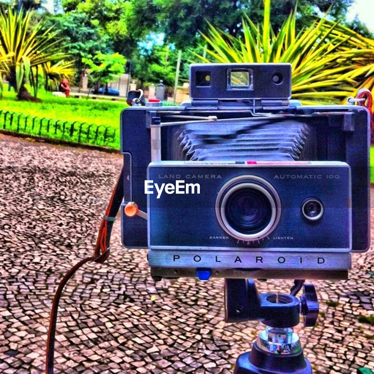 photography themes, old-fashioned, camera - photographic equipment, retro styled, technology, tree, no people, outdoors, movie camera, day, film industry