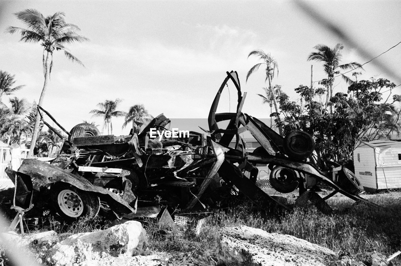 transportation, plant, abandoned, mode of transportation, tree, sky, damaged, nature, obsolete, day, no people, field, land vehicle, palm tree, motor vehicle, old, deterioration, car, decline, run-down, outdoors, junkyard, wheel