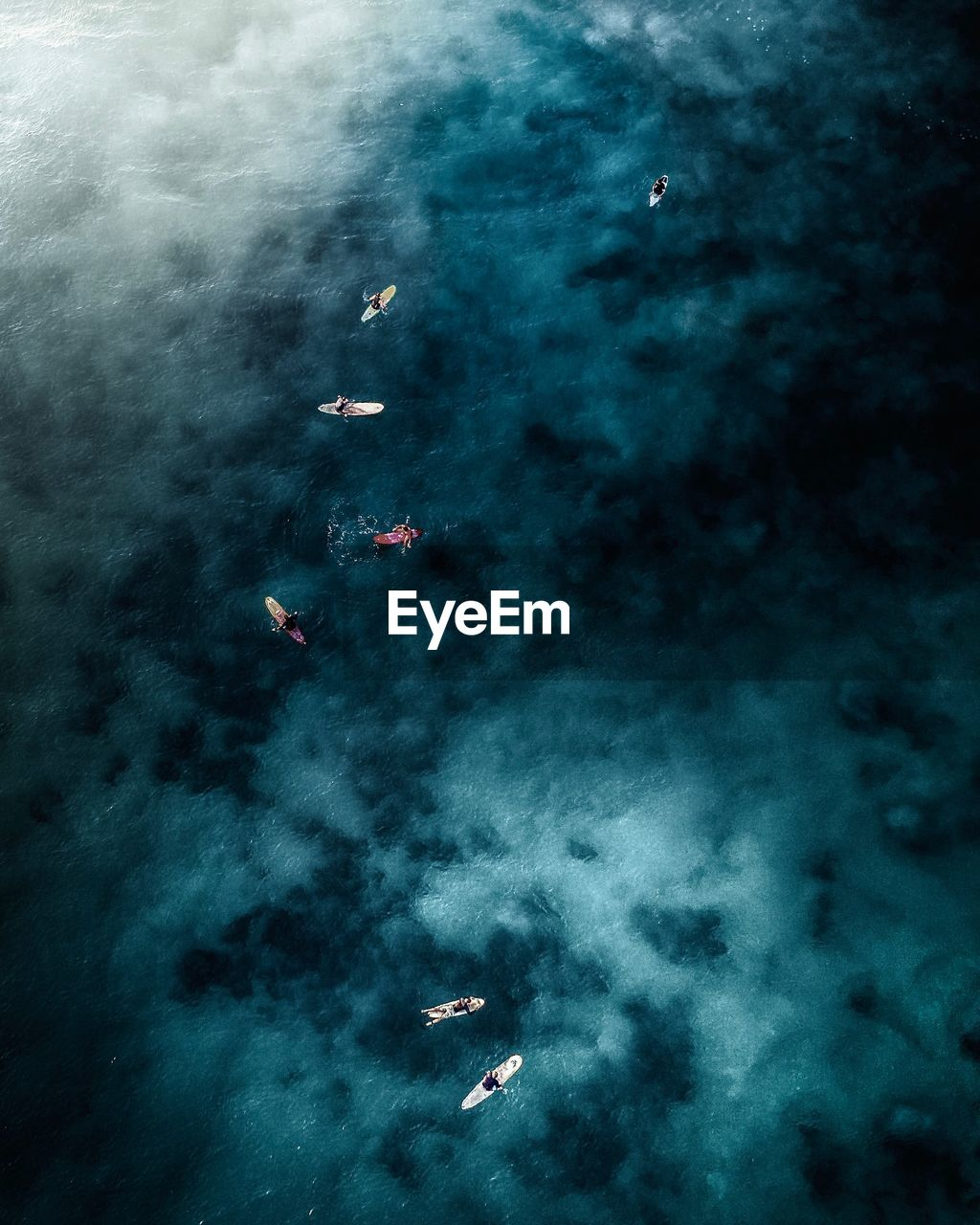 sea, nature, water, animal themes, high angle view, sport, beauty in nature, animal, outdoors, underwater, swimming, animal wildlife, real people, sea life, animals in the wild, scenics - nature, group of people, cloud - sky, adventure, undersea, marine