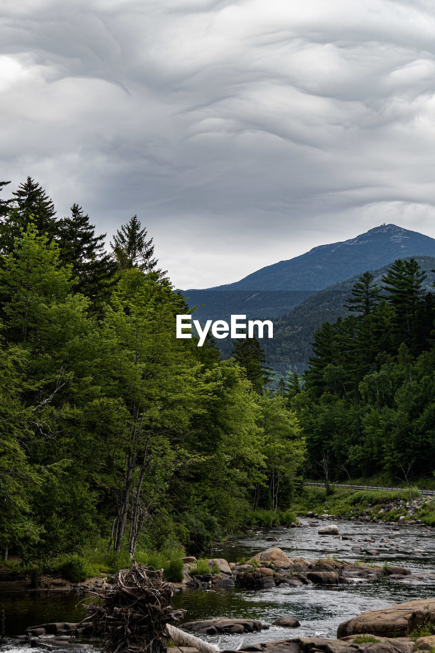 Scenic view of forest against sky, adirondack mountains.