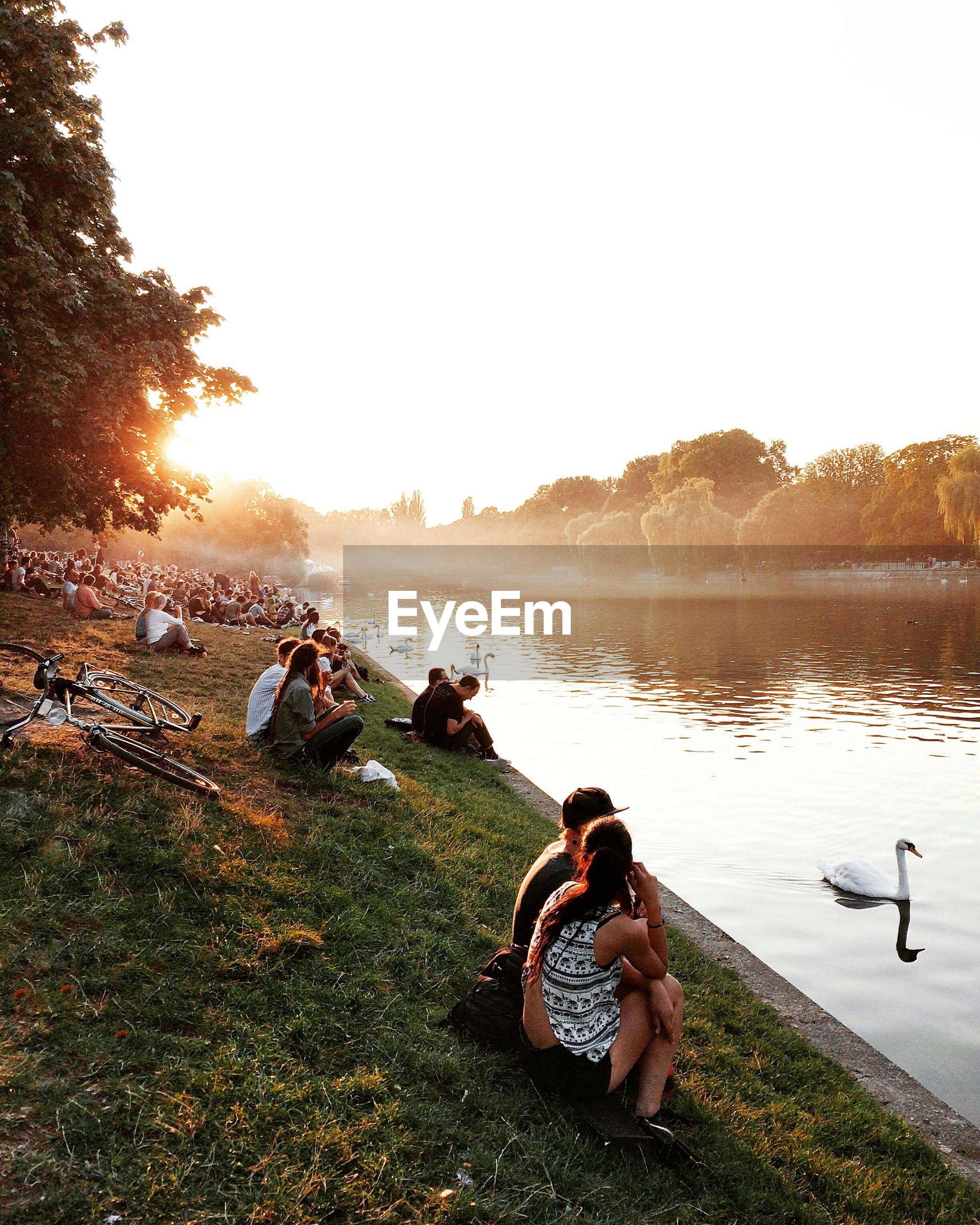 Scenic view of people sitting by lake in park