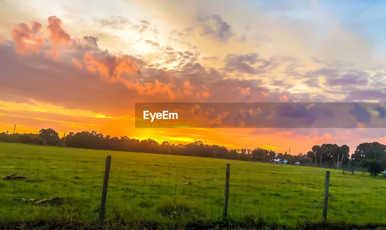 sky, sunset, beauty in nature, cloud - sky, scenics - nature, landscape, field, environment, land, orange color, tranquil scene, tranquility, green color, plant, idyllic, nature, rural scene, no people, agriculture, growth, outdoors