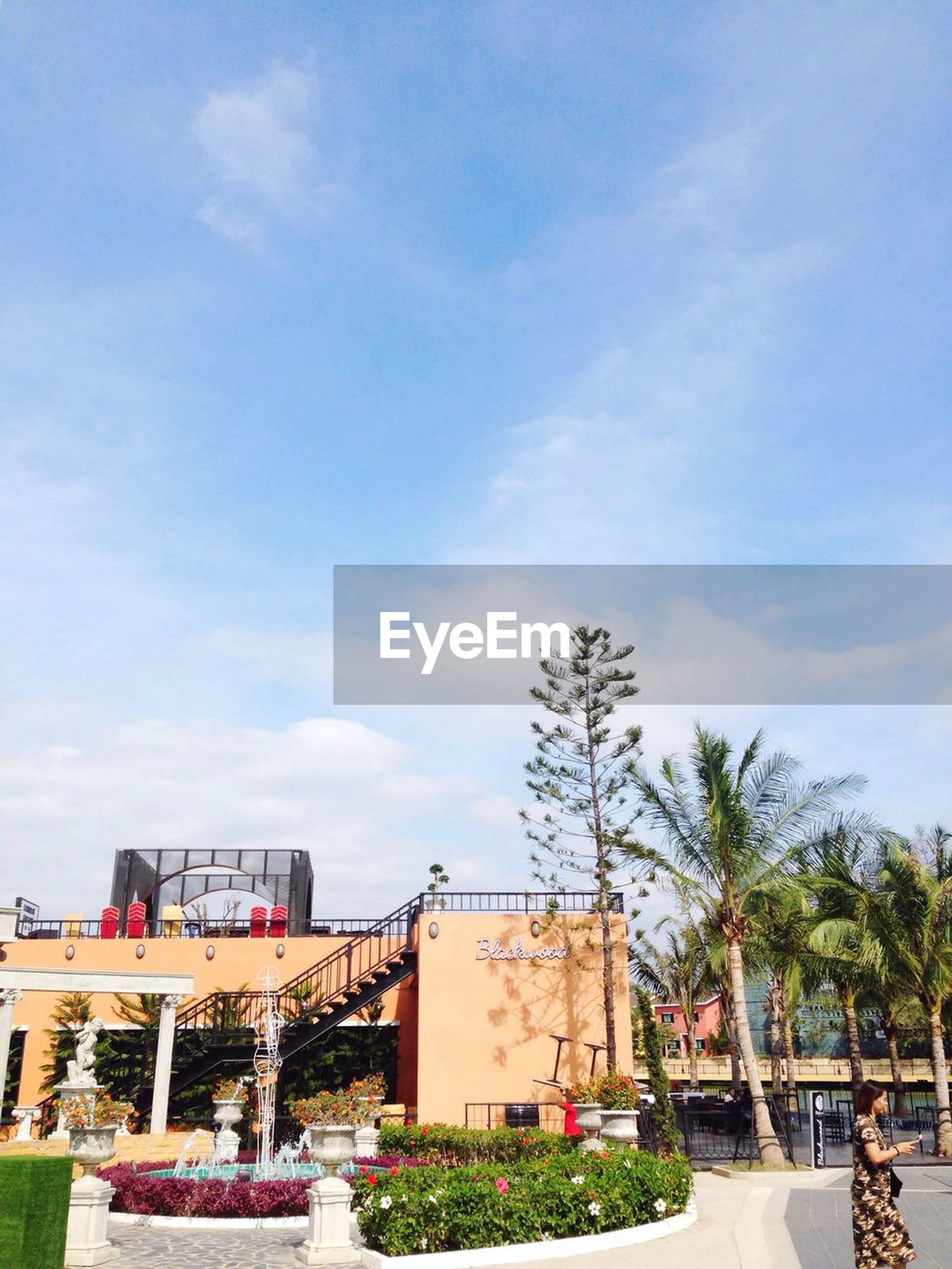 building exterior, architecture, built structure, sky, tree, house, roof, residential structure, residential building, cloud - sky, potted plant, day, cloud, outdoors, low angle view, sunlight, balcony, growth, nature, no people