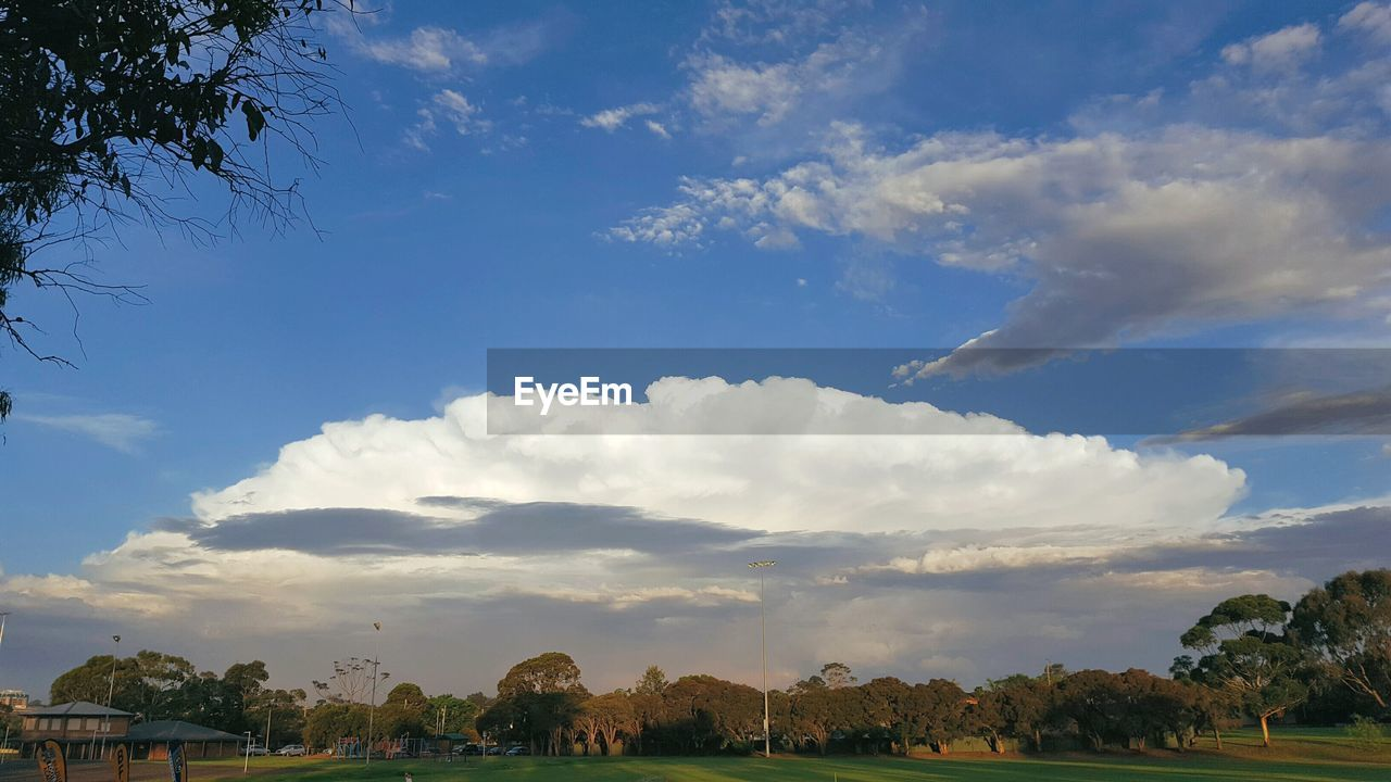 cloud - sky, sky, tree, nature, beauty in nature, low angle view, day, tranquil scene, tranquility, no people, outdoors, scenics