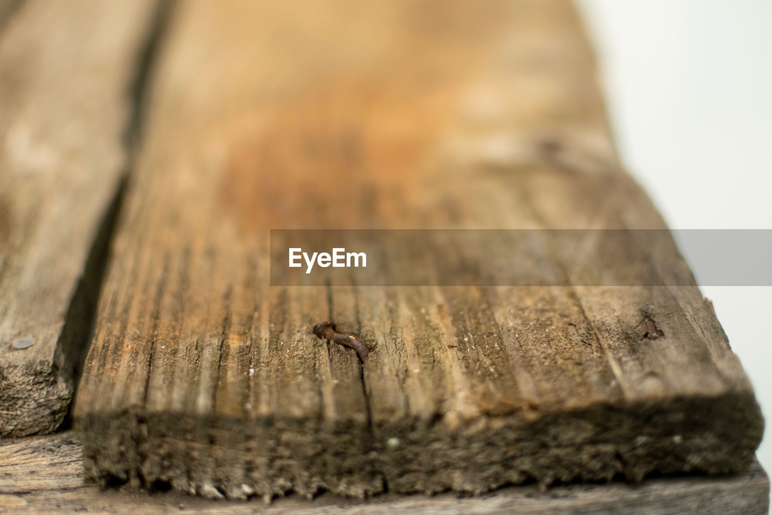 wood - material, animals in the wild, insect, animal themes, selective focus, one animal, animal wildlife, close-up, bee, no people, day, outdoors, beehive, apiculture, nature