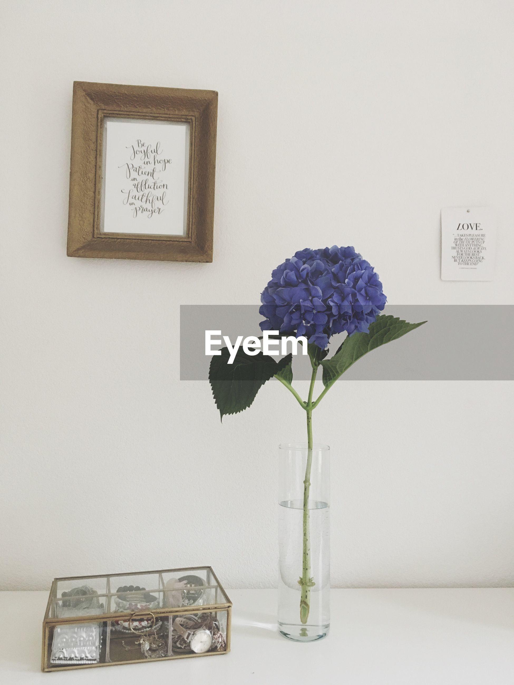 vase, flower, indoors, table, wall - building feature, close-up, bunch of flowers, freshness, purple, flower head, plant, flower arrangement, petal, fragility, geometric shape, no people, electric light