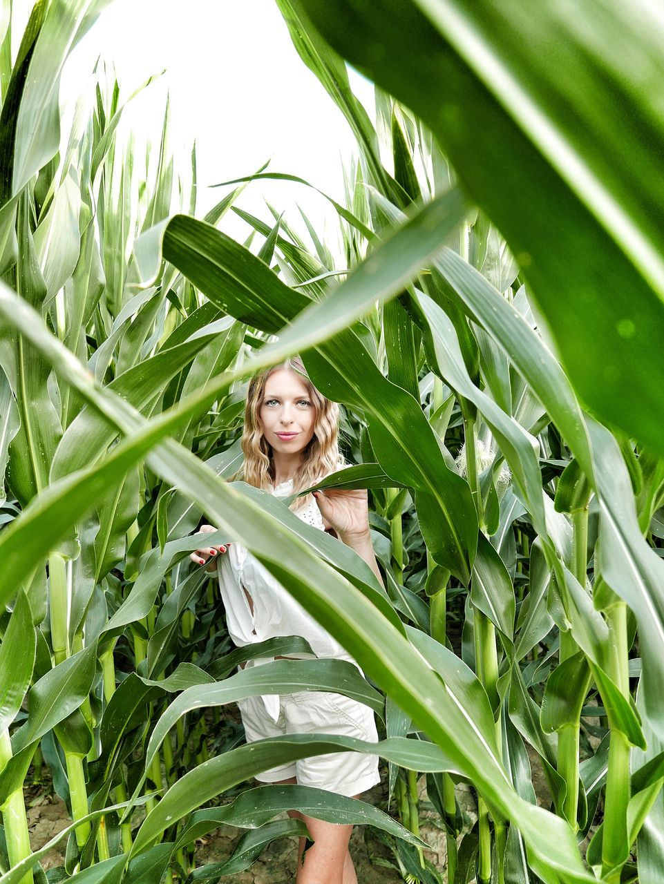 Portrait of young woman standing amidst corns on field