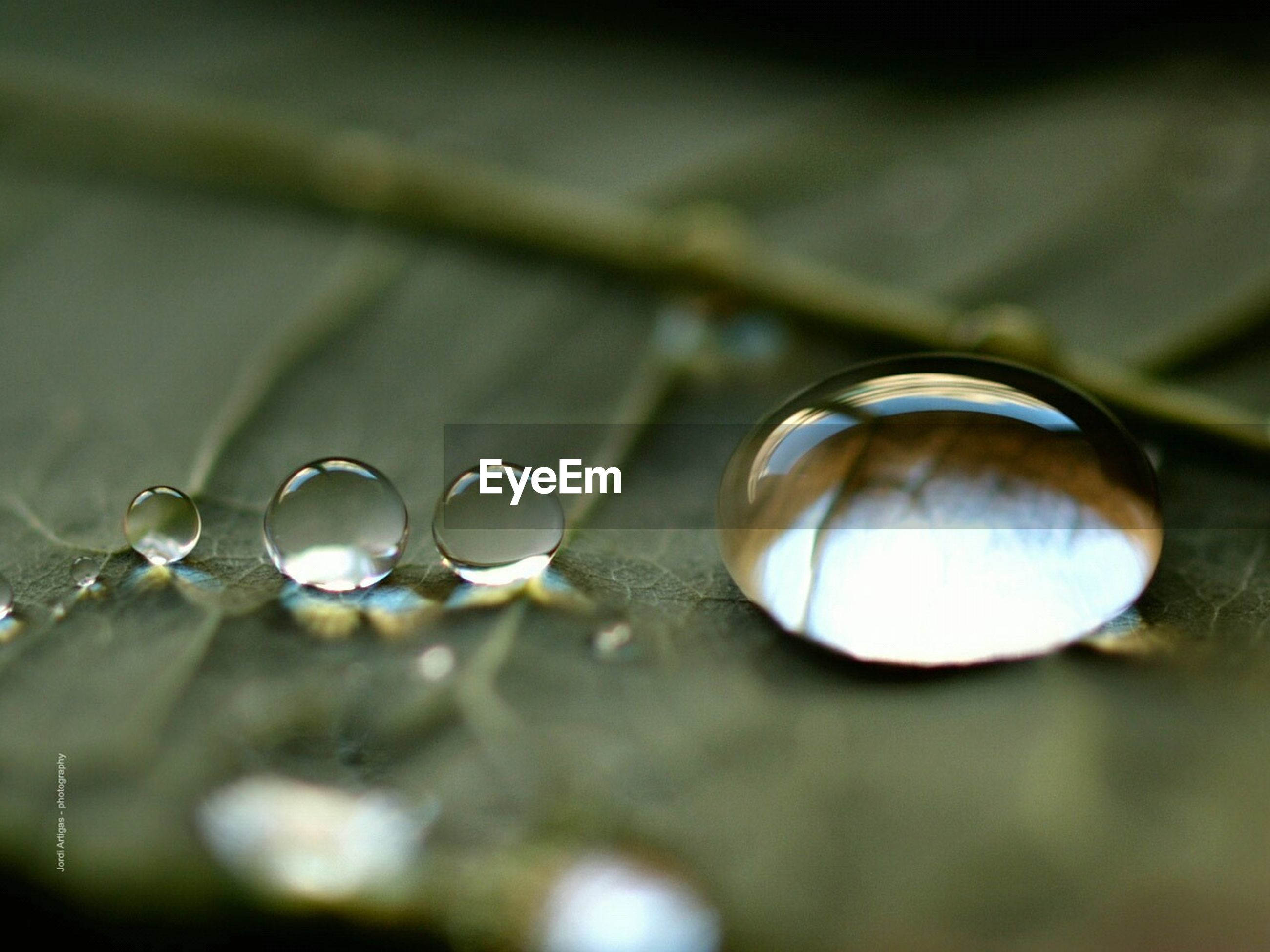 close-up, focus on foreground, selective focus, metal, indoors, sphere, no people, hanging, fragility, still life, circle, reflection, metallic, shiny, detail, lighting equipment, day, water, drop, nature