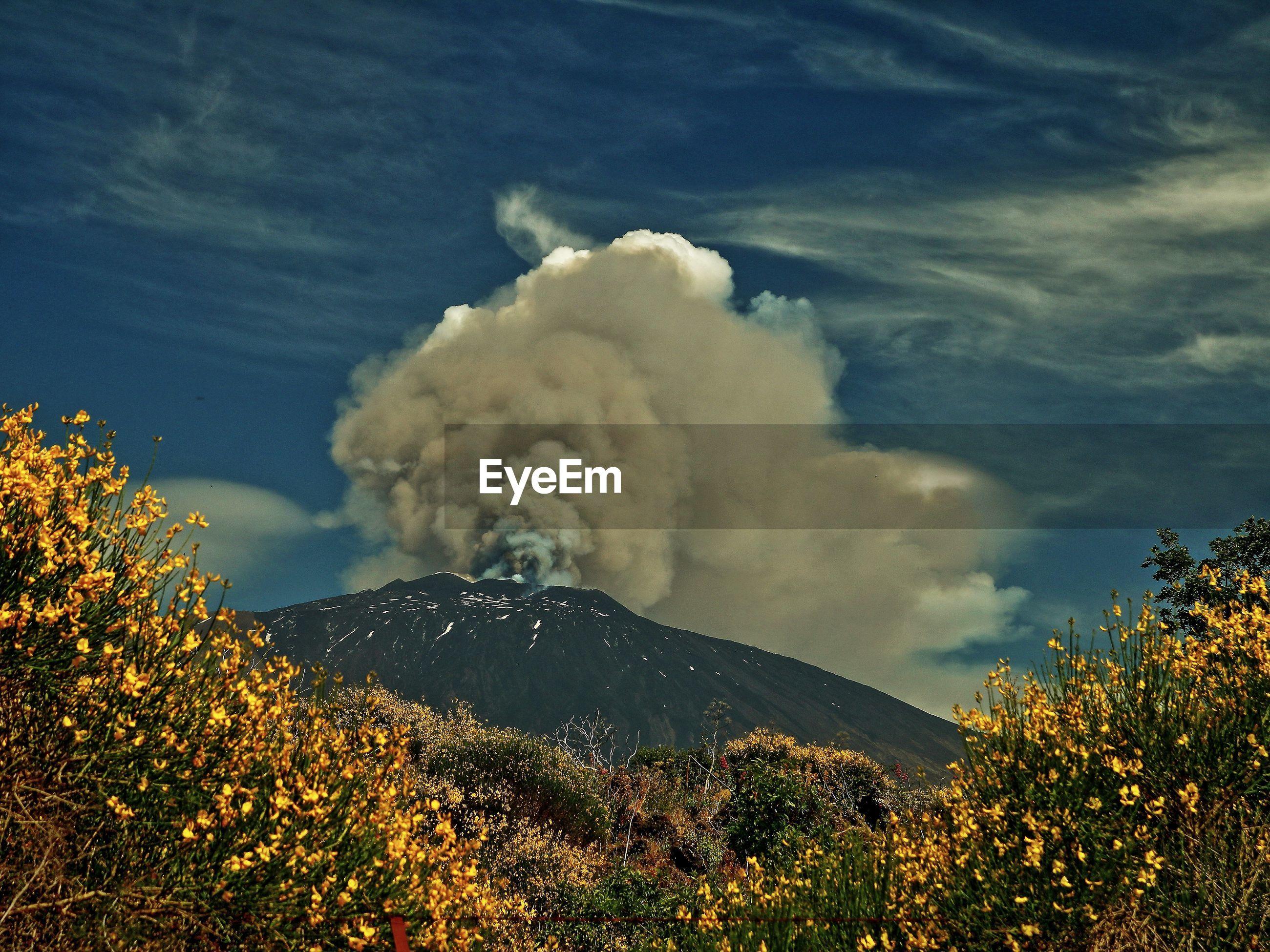 Smoke emitting from mt etna against sky