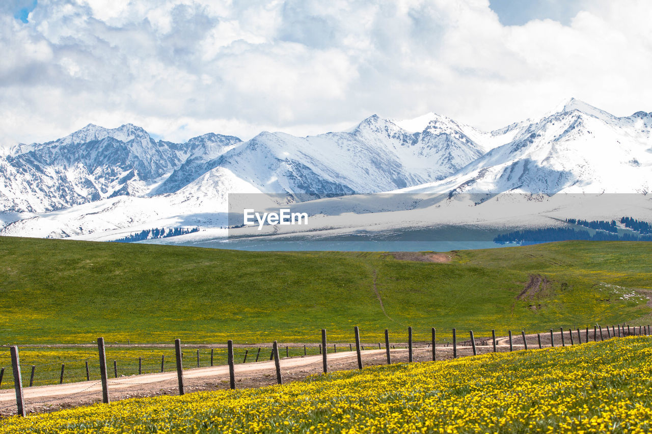 Scenic view of grassy hill by snowcapped mountains against sky