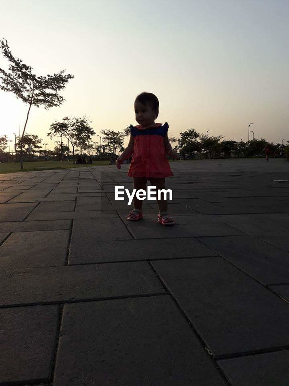 childhood, one person, full length, boys, child, elementary age, children only, playing, real people, sunset, standing, clear sky, tree, one boy only, outdoors, sky, day, people