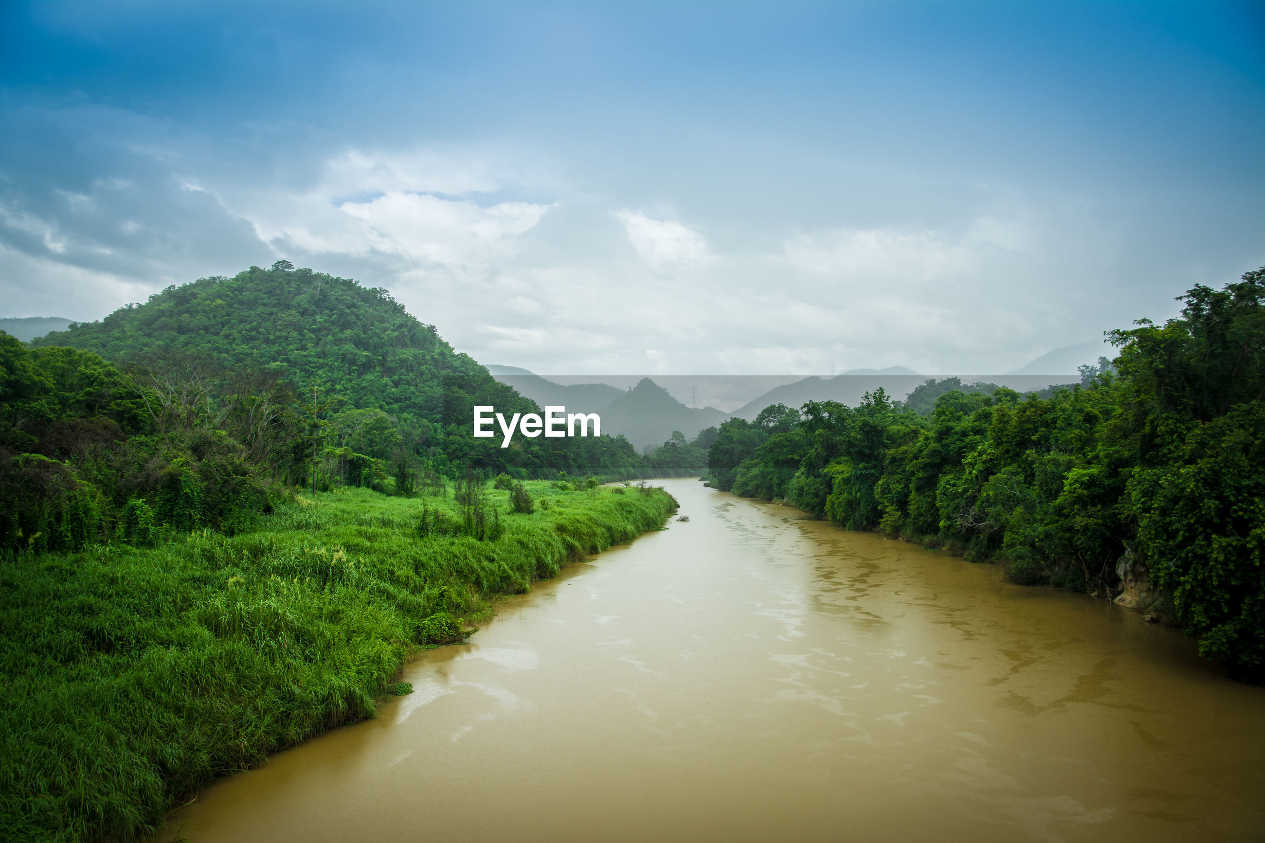 SCENIC VIEW OF RIVER WITH TREES IN BACKGROUND